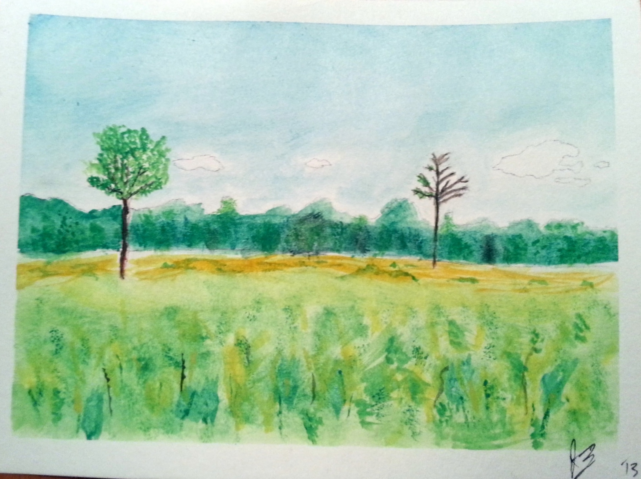 November, 2013  This is the second thing I ever painted. It's  Glacier Ridge Metro Park , mid-fall.