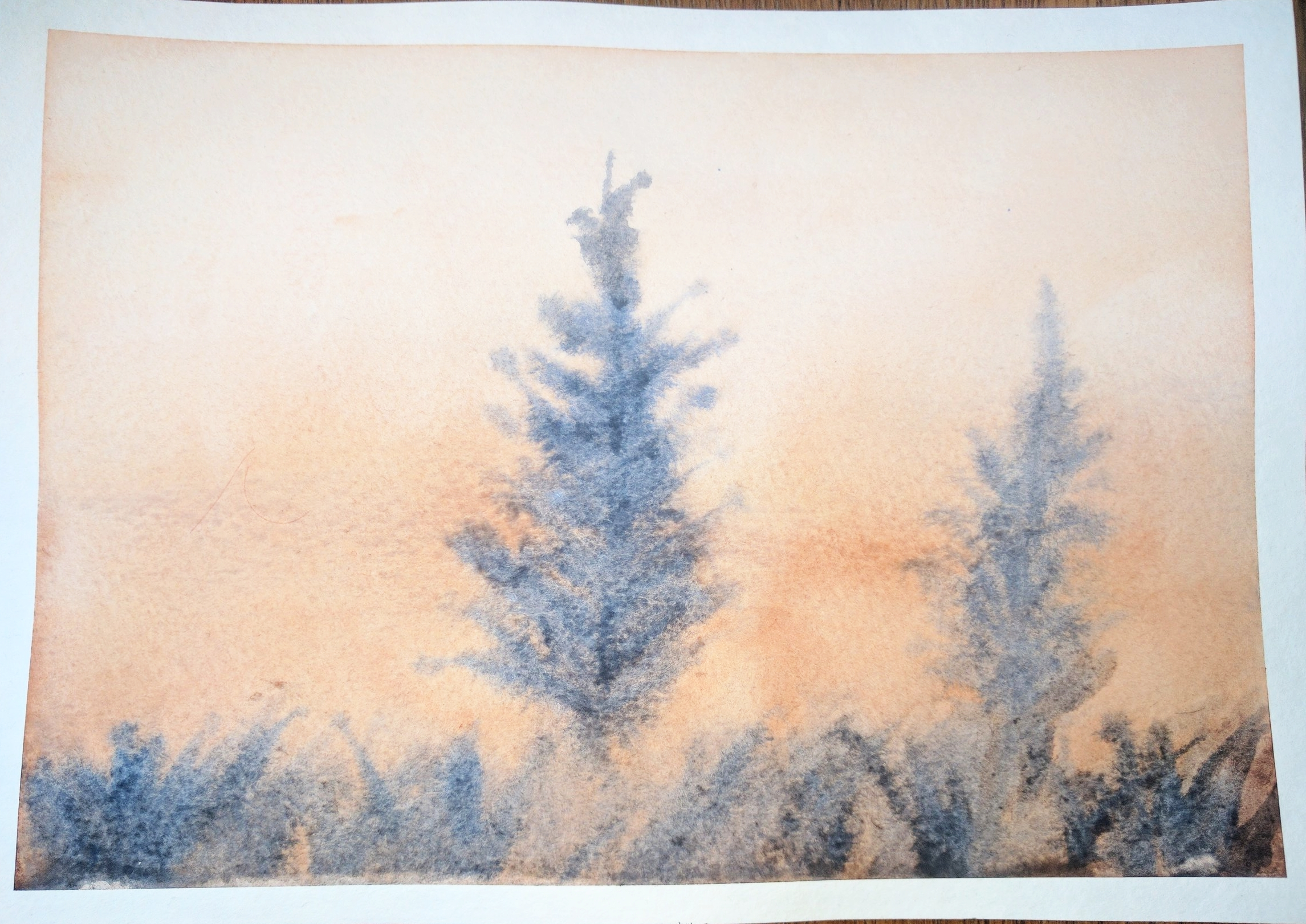 """February, 2017  A third attempt at """"Two Pines"""". The trees turned out softer, which I'm happy about, but I don't think it was my best attempt at grass in the foreground."""