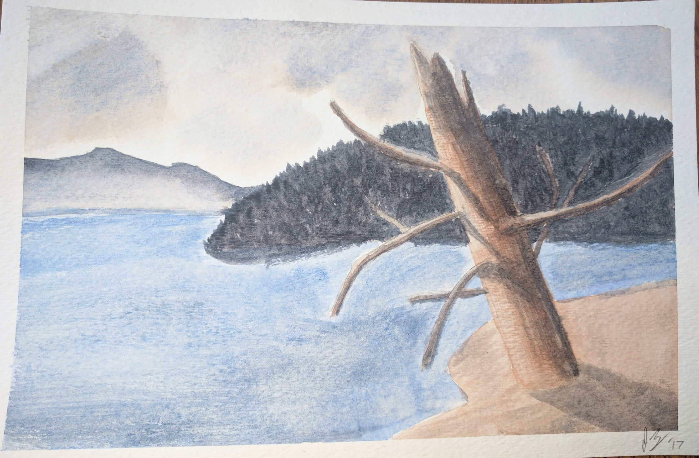 March, 2017  This was another painting I attempted based on an original in a watercolor tutorial book. I like the somber feel and muted tones in this one, and think the dead tree turned out halfway decent.