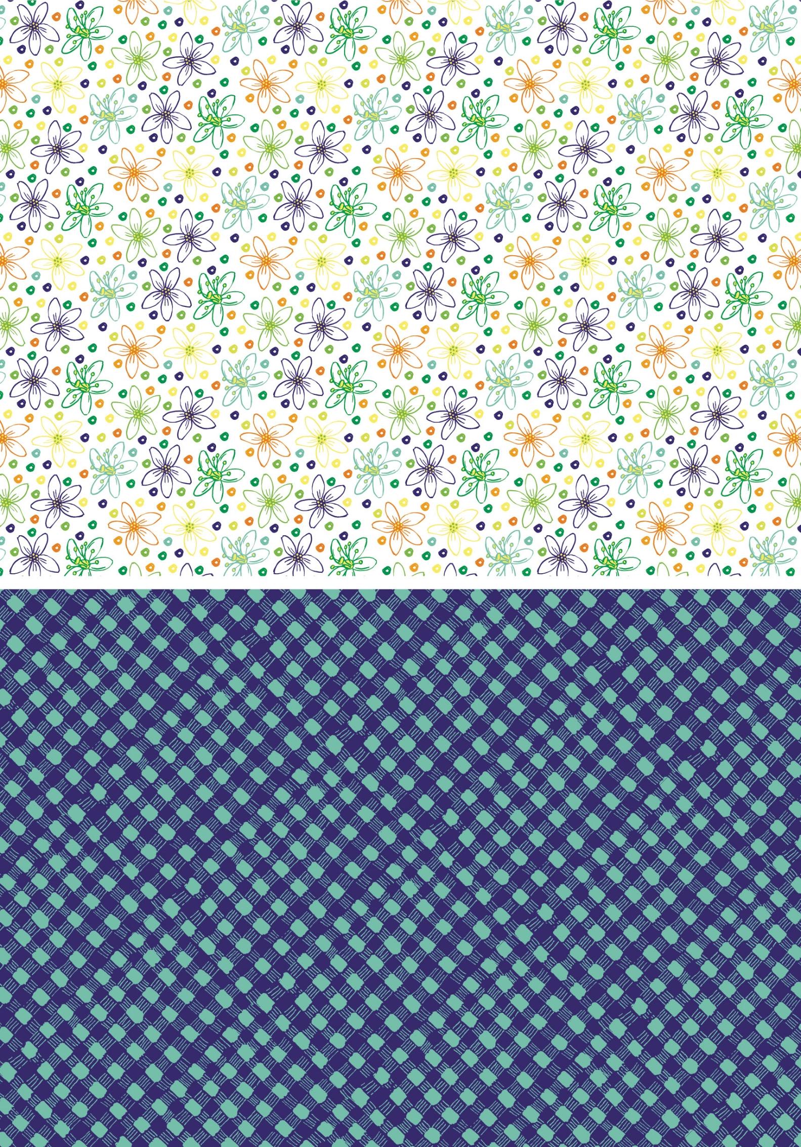BlueprintPrints-AmyFrazer 101-12016.jpg