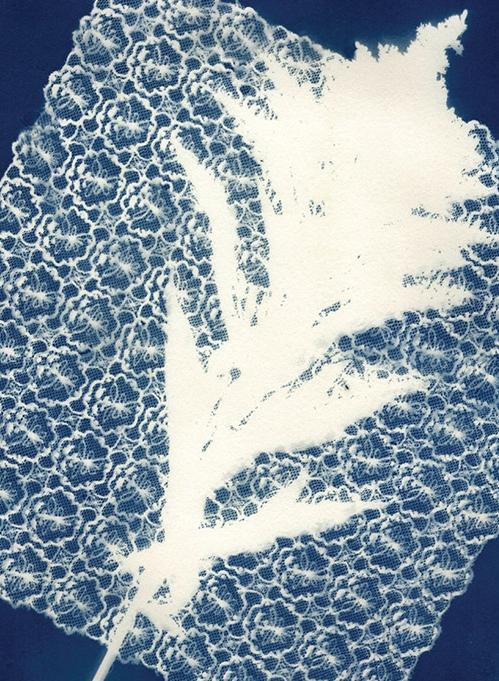 53 BlueprintPrints-AmyFrazer.jpg