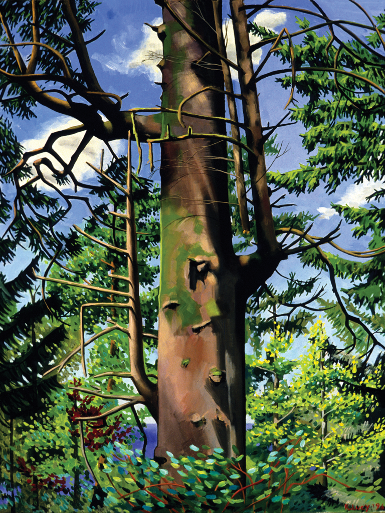 THIS TREE  |  LEAH COLOFF