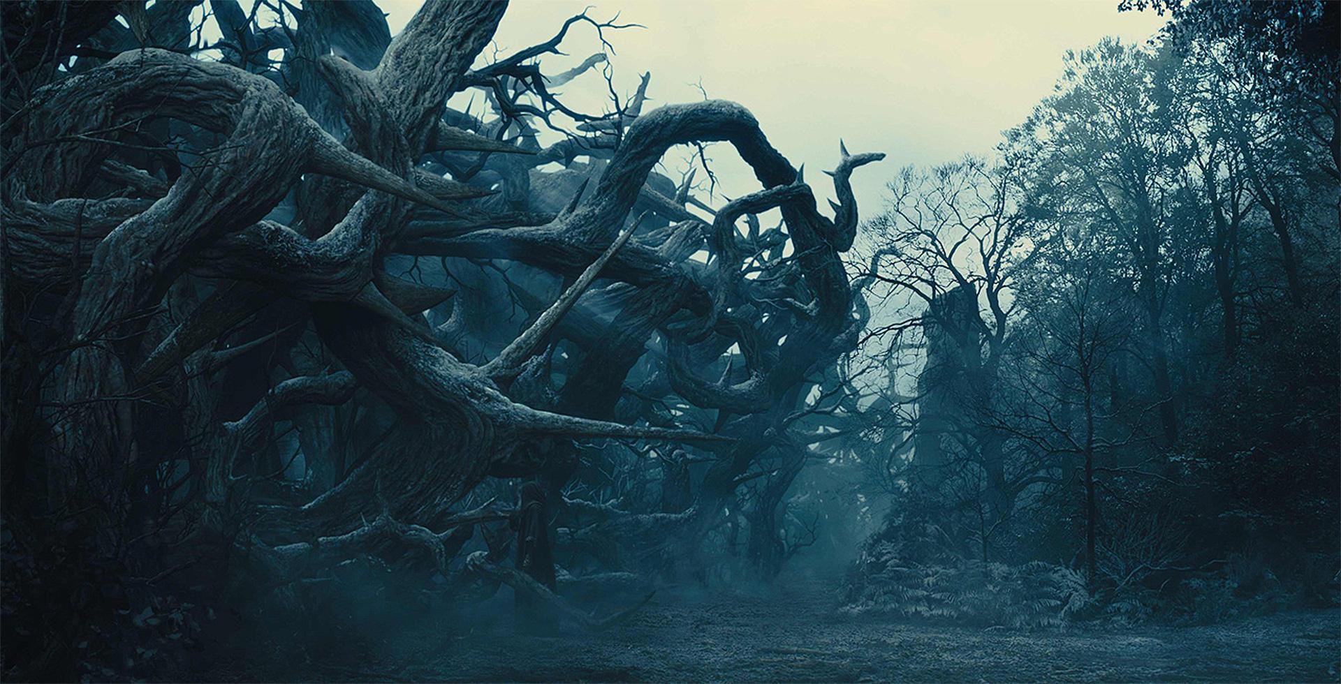 3. Maleficent_DMP_IgorStaritsin.jpg