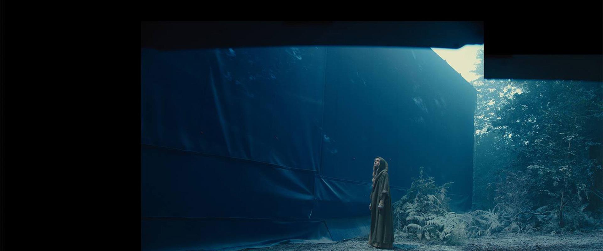 3.-Maleficent_Plate_IgorStaritsin.jpg