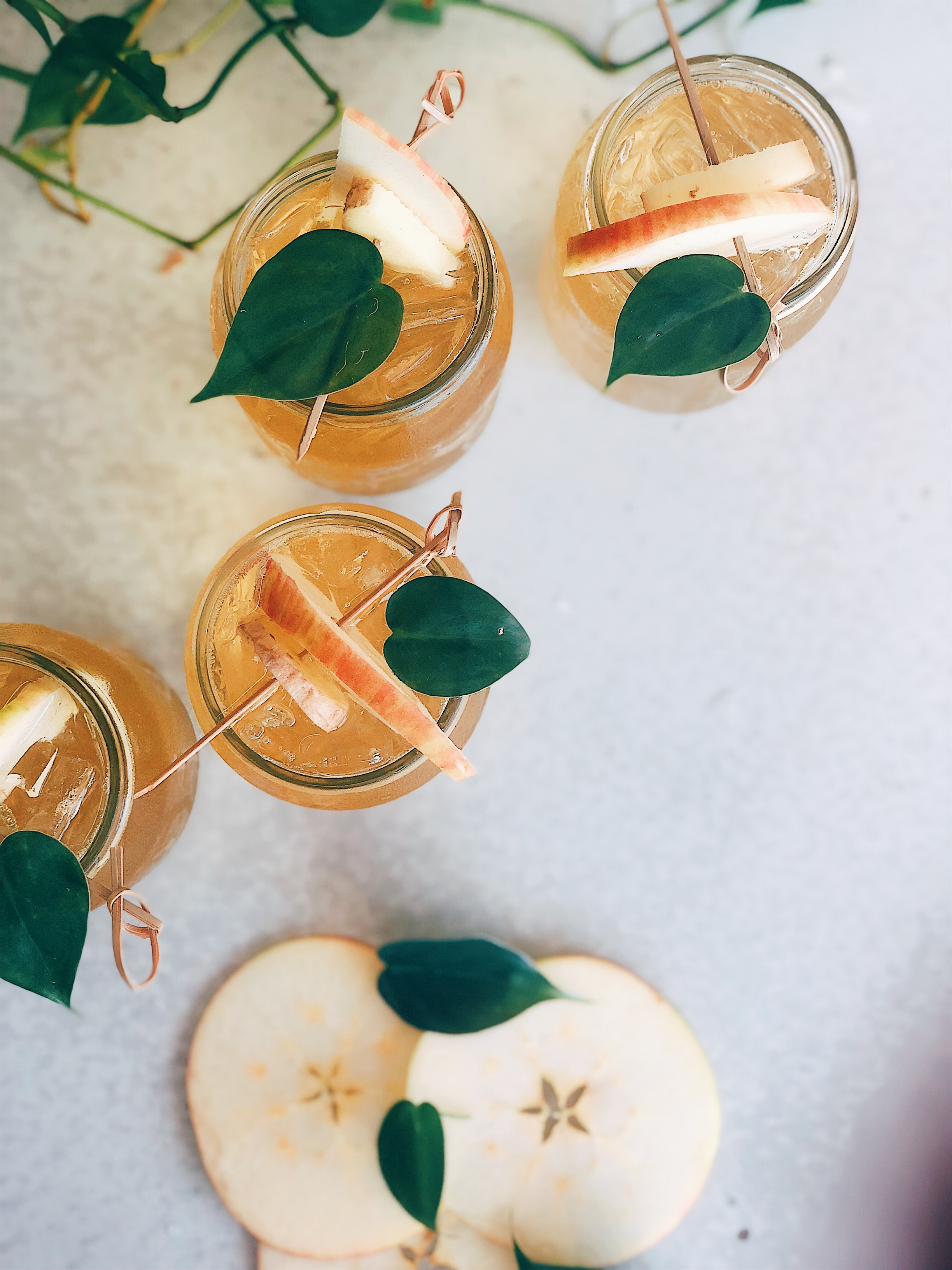 Caramel Apple Ginger Spritzer - To create the spritzer:• 5oz Apple Cider• 1 oz whiskey• 1TB Caramel Apple Jam• 4 oz fermented ginger soda (see below)• Apple slices for garnishInstructions:Add all ingredients to your mason jar, shake and serve!