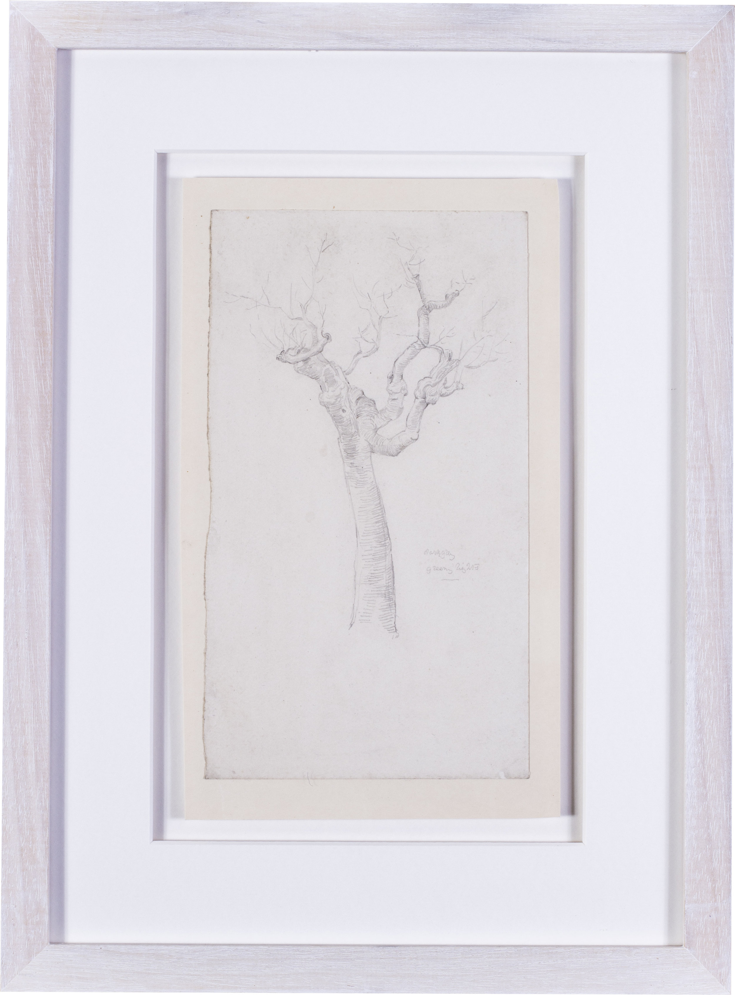 A twisted tree study    pencil on paper  9.3/4 x 5.1/2 in. (24.8 x 14 cm.)  inscribed 'dark grey / greeny lights' (lower right)  Provenance: The Clayton-Stamm Collection.  Dominic Winter, Cirencester, 8thNovember 2018, lot 464  £900