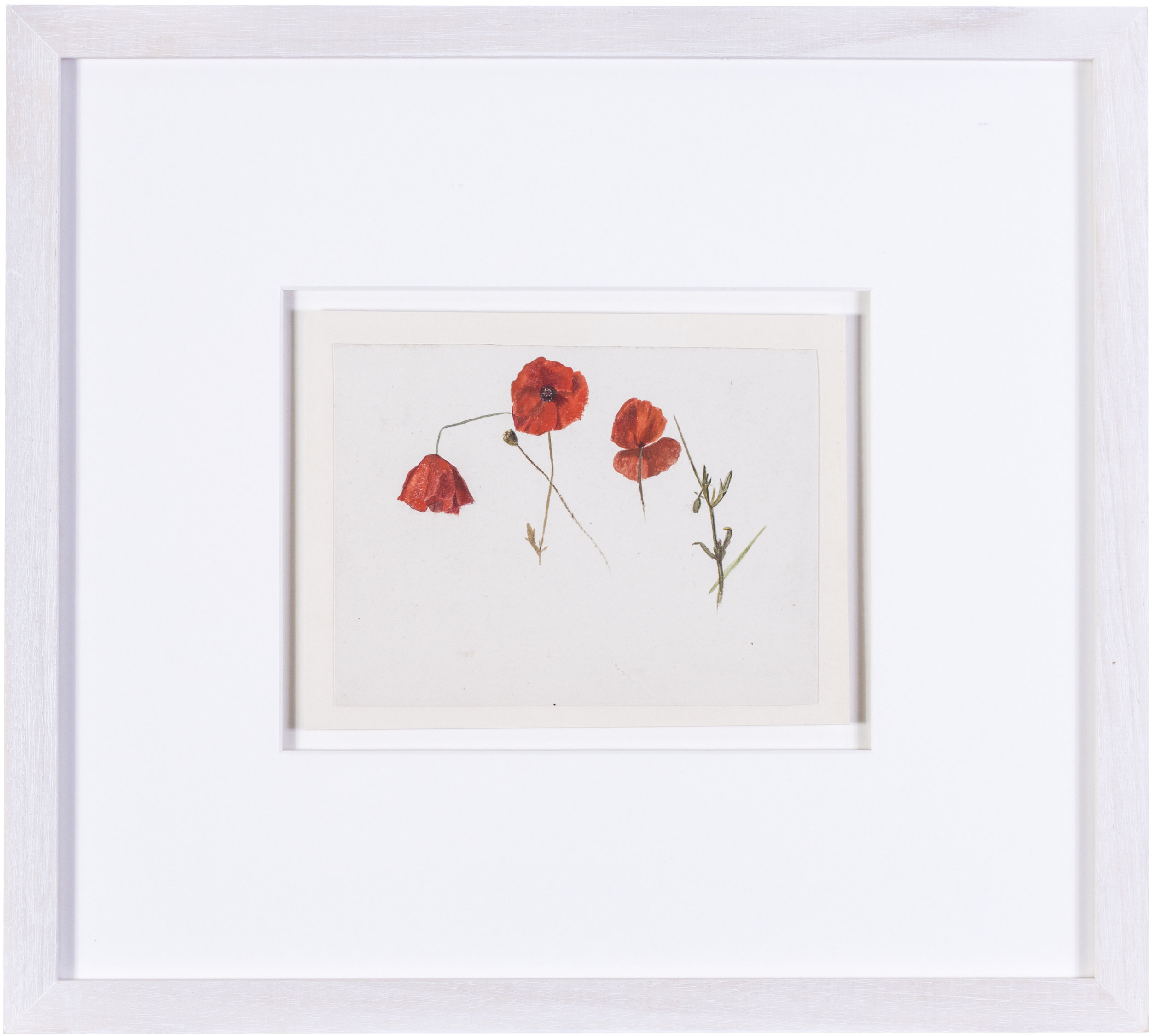 Poppies    watercolour on paper  5.1/2 x 7.1/2 in. (14 x 20 cm.)  Provenance: The Clayton-Stamm Collection.  Dominic Winter, Cirencester, 8thNovember 2018, lot 464  £900
