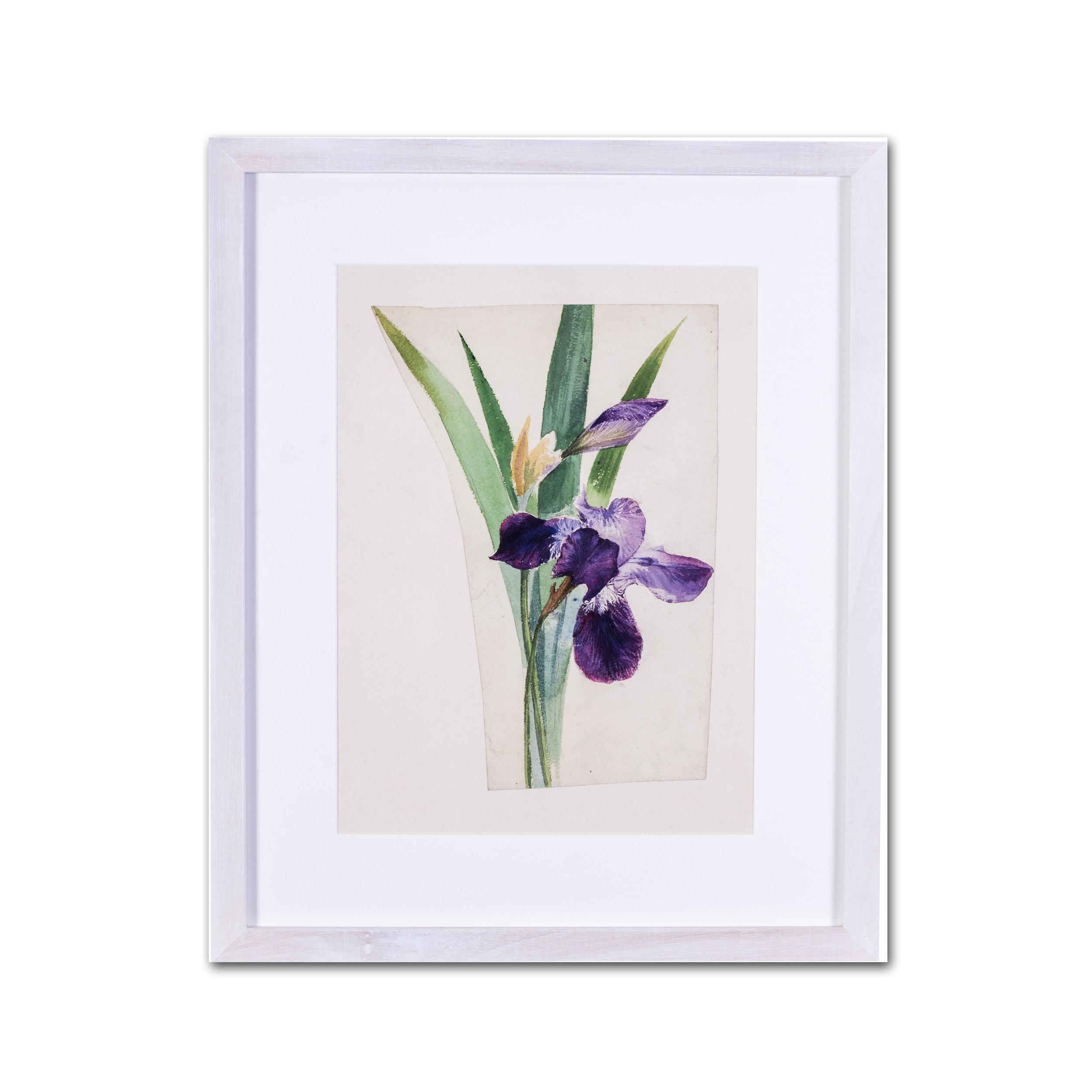 Evelyn de Morgan    Irises    Price: £1,100