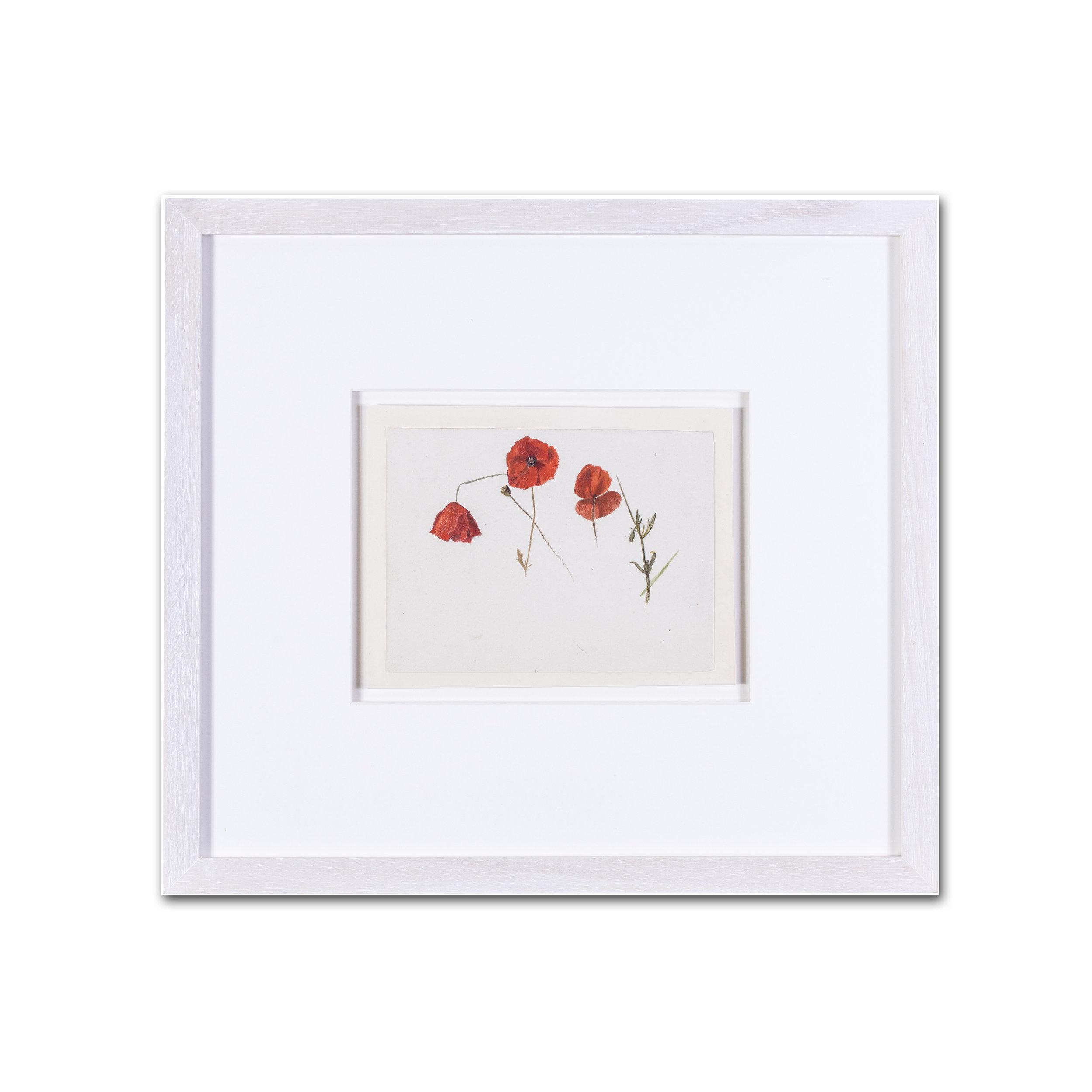 Evelyn de Morgan  Poppies  Price: £900