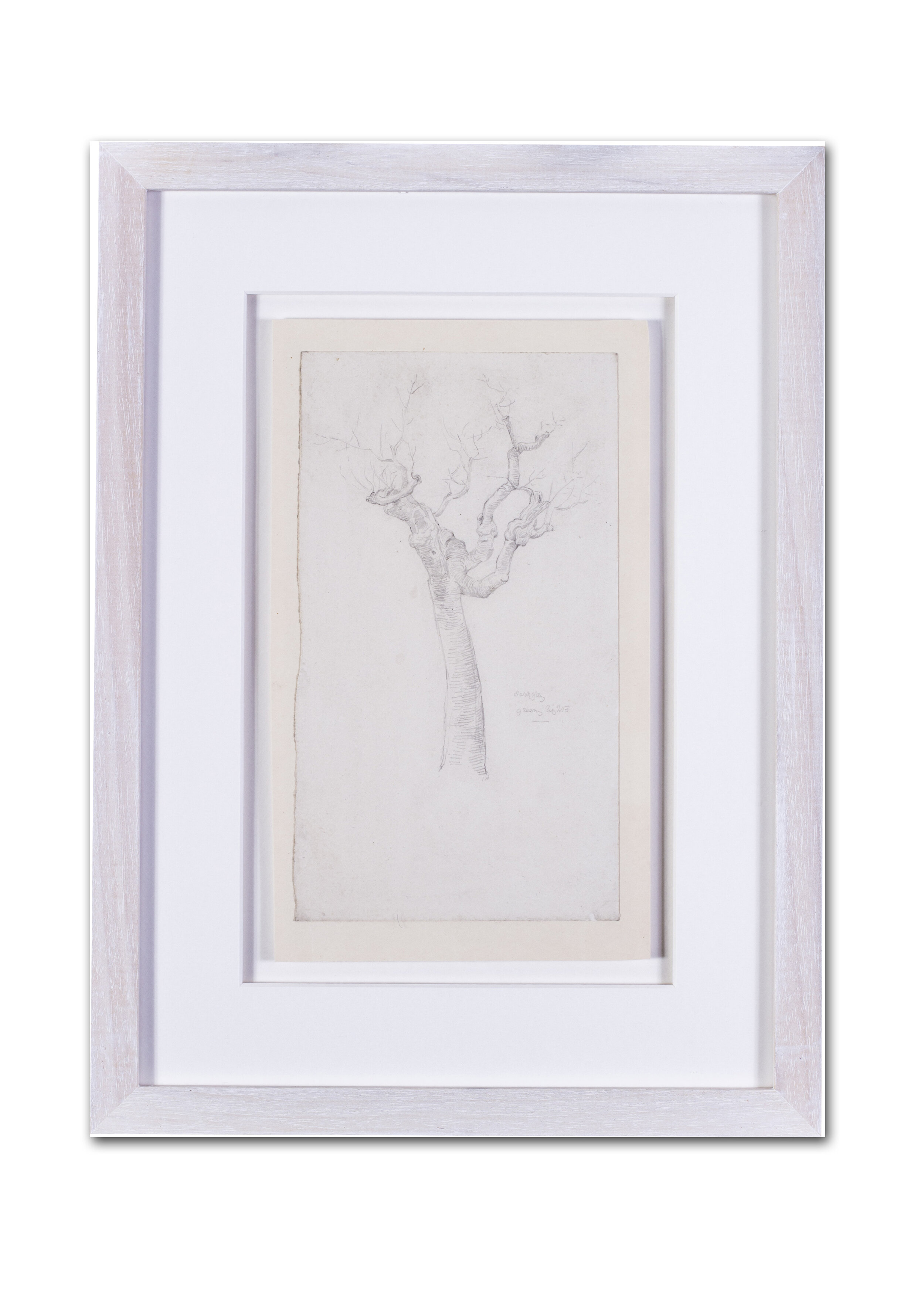 Evelyn de Morgan    A twisted tree study    Price: £900
