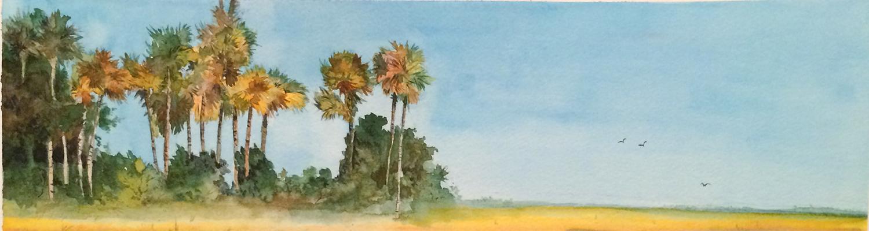 Florida View.jpg