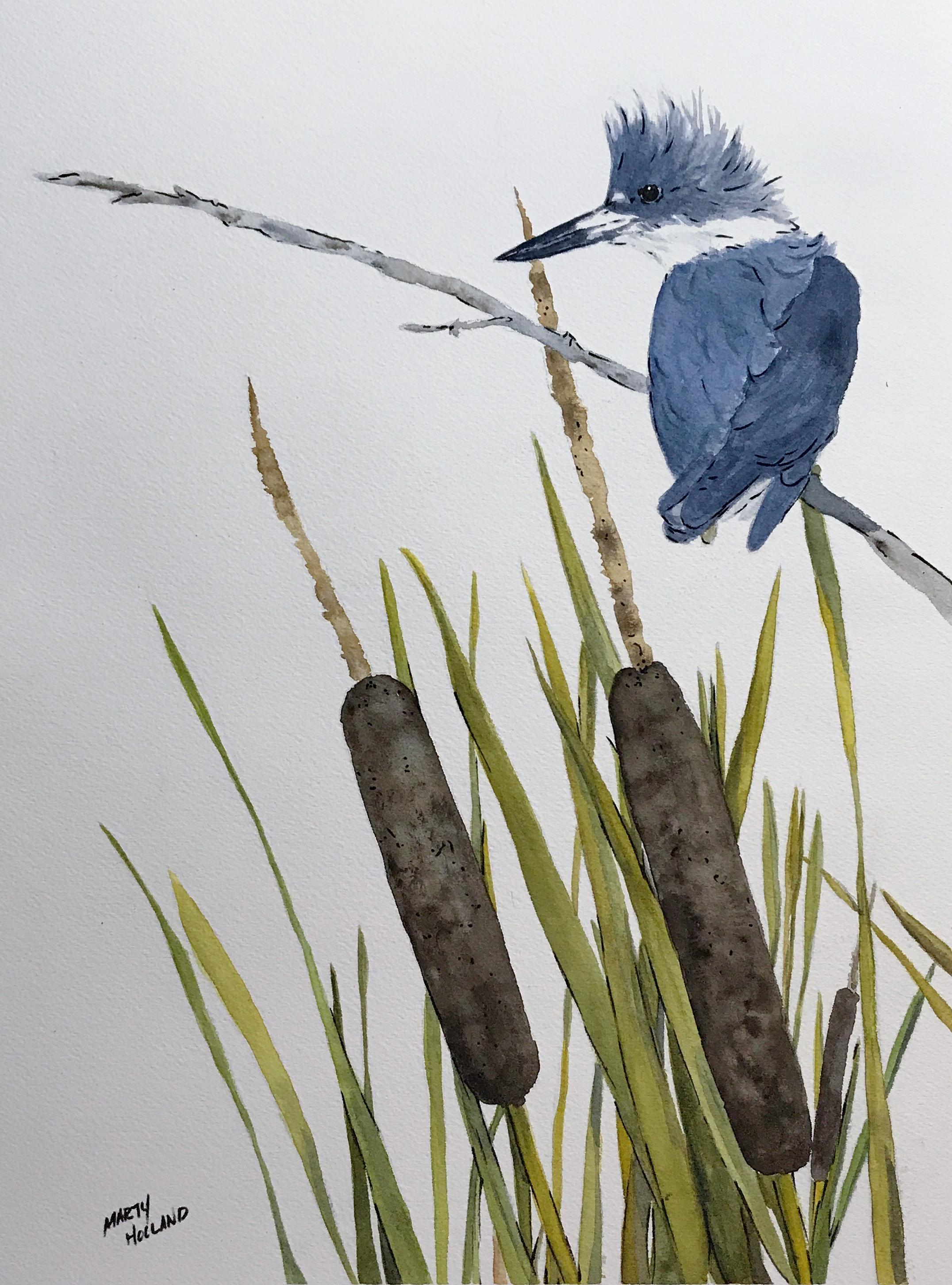Kingfisher1.jpg