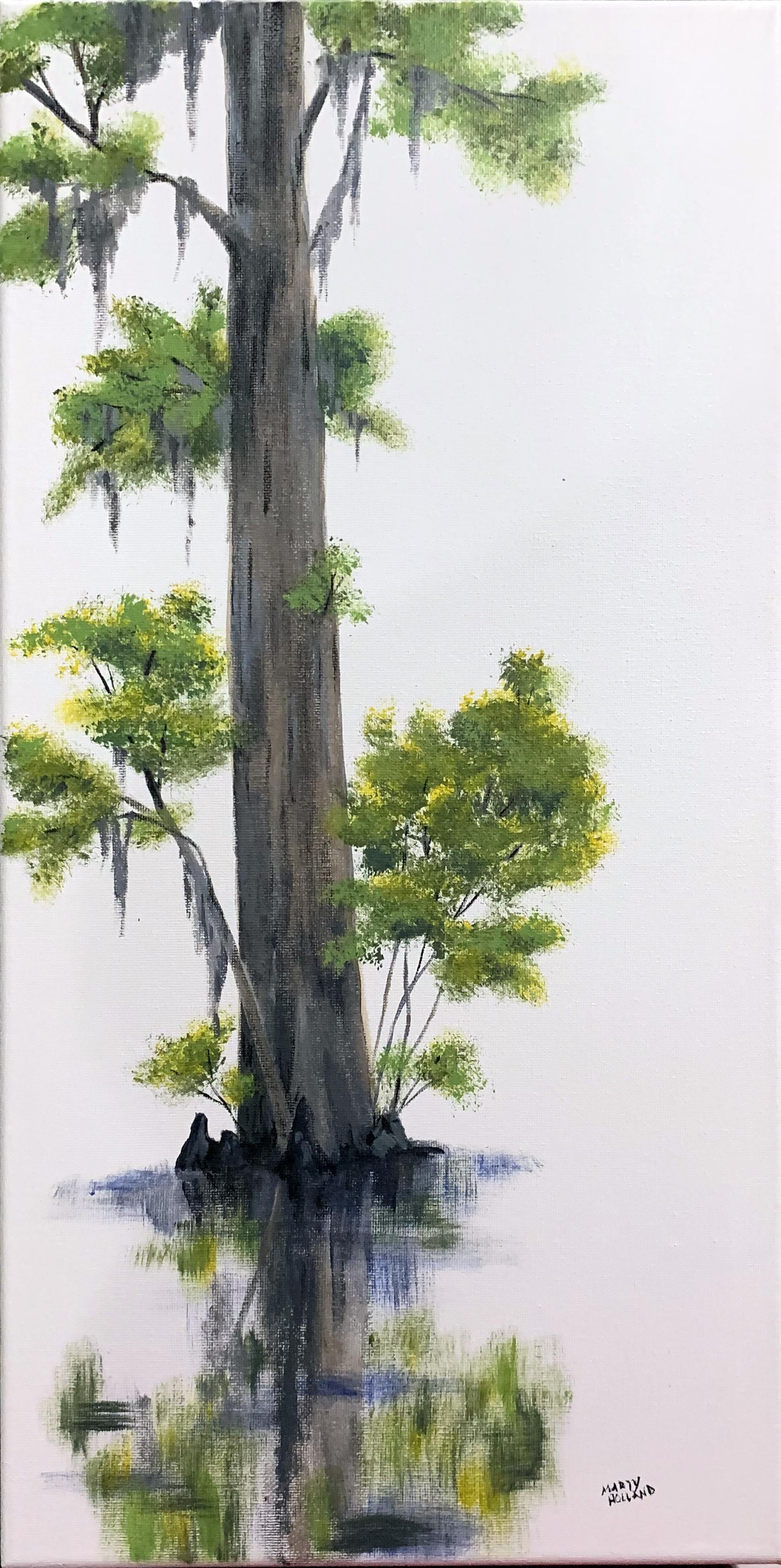white cypress.jpg