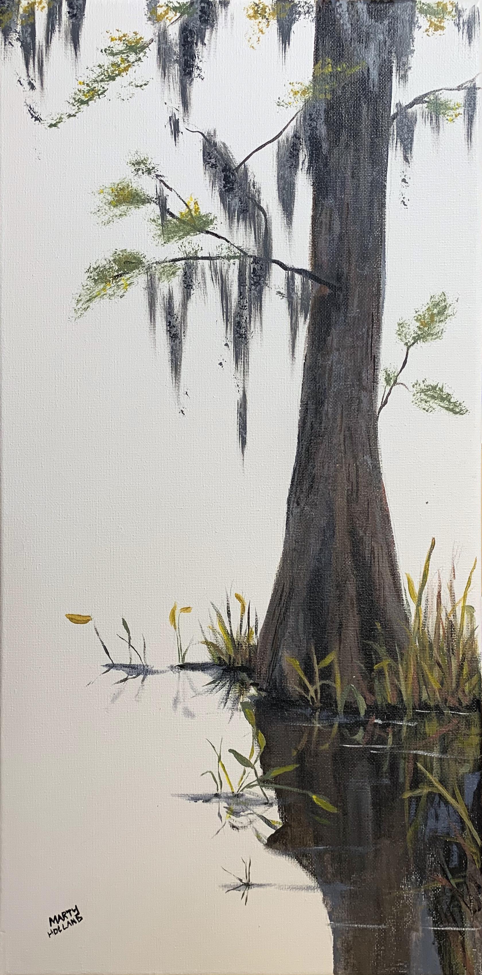 white cypress 2.jpg