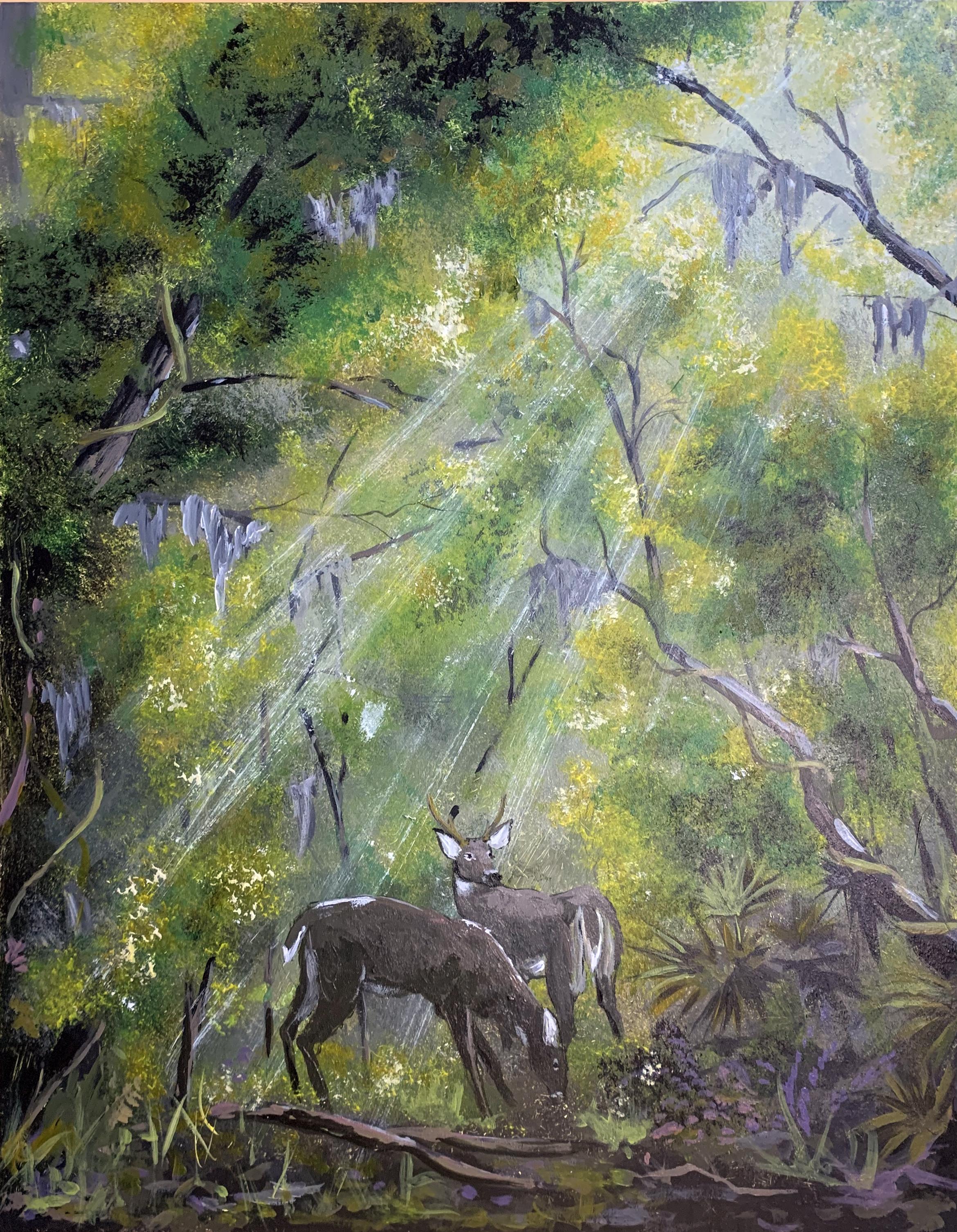 sunray deer.jpg
