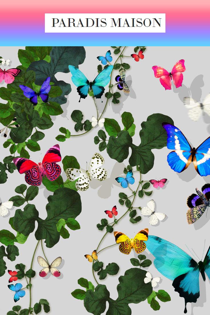 butterfly_grey.jpg