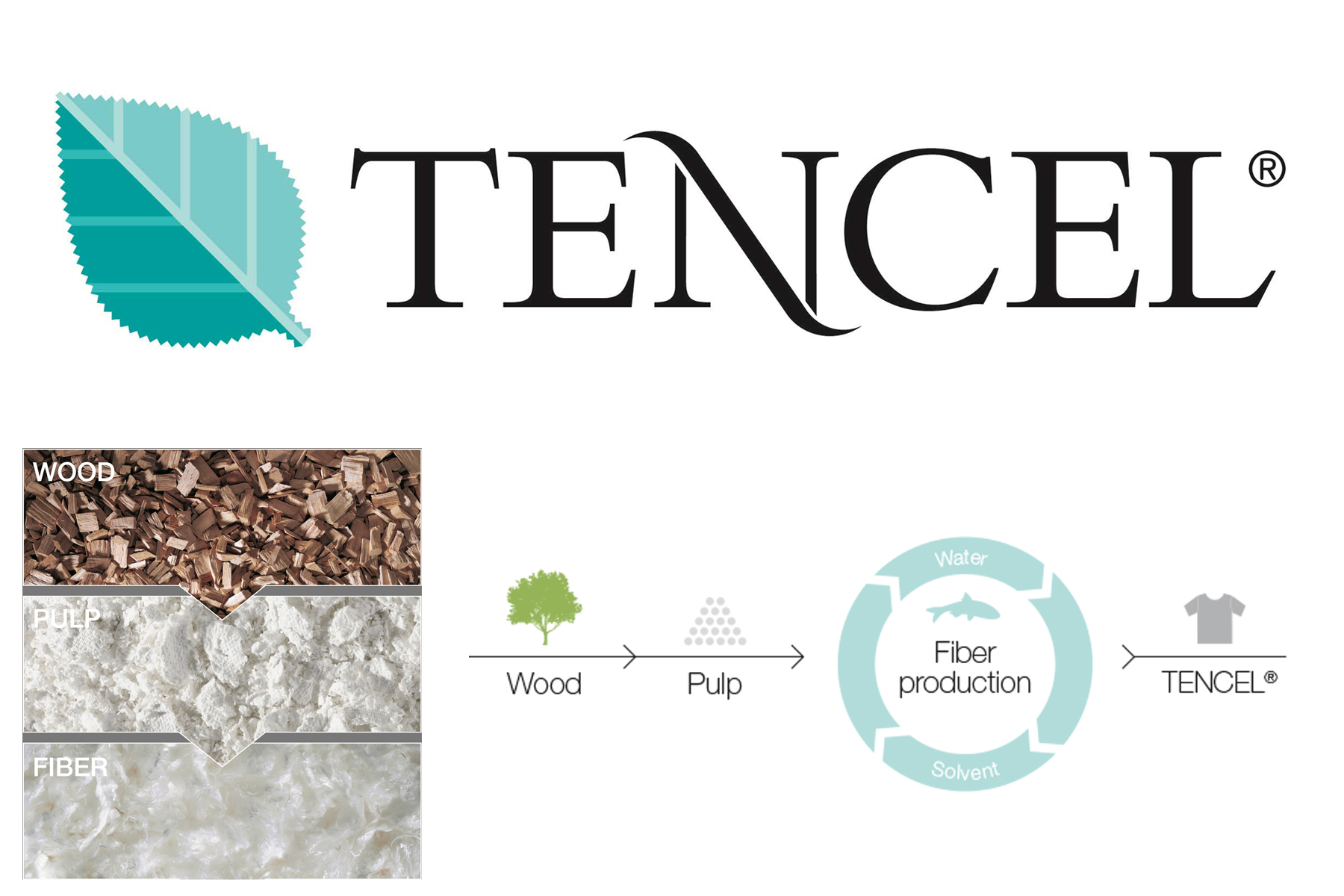 014 tencel Closed loop wood pulp fibre.jpg