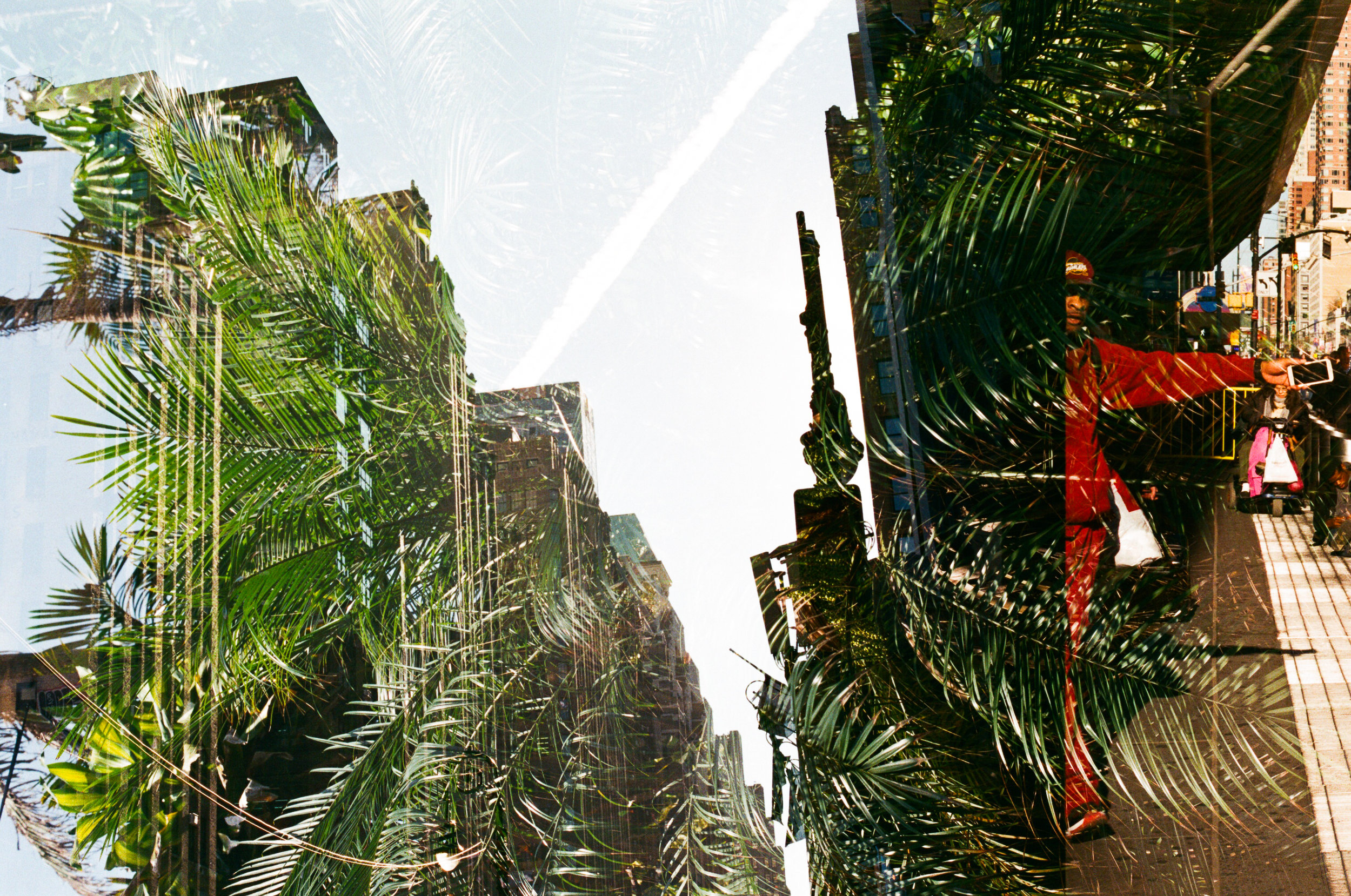 new york and south africa 35mm film double exposures