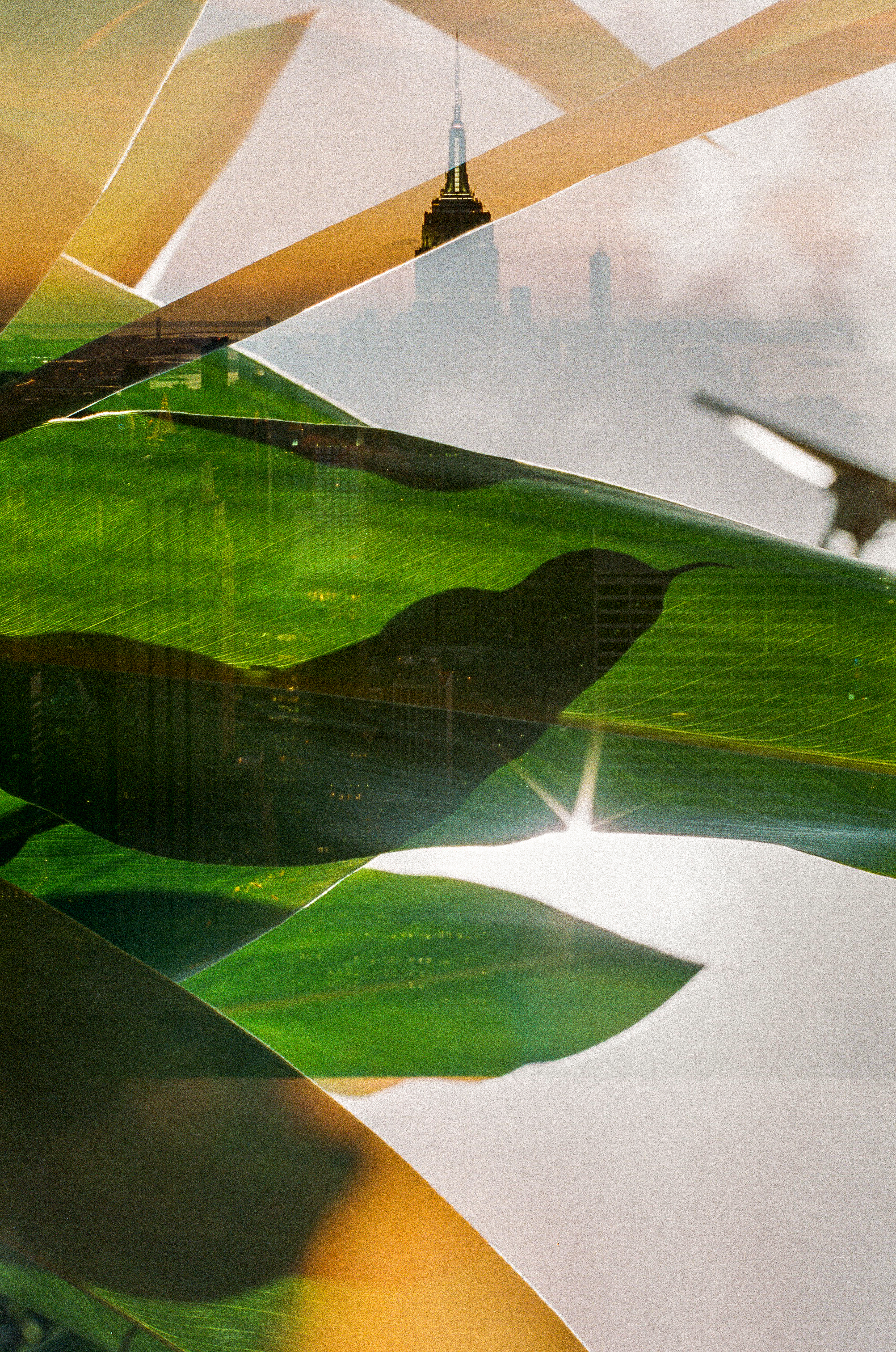 new york and south africa 35mm film double exposures16