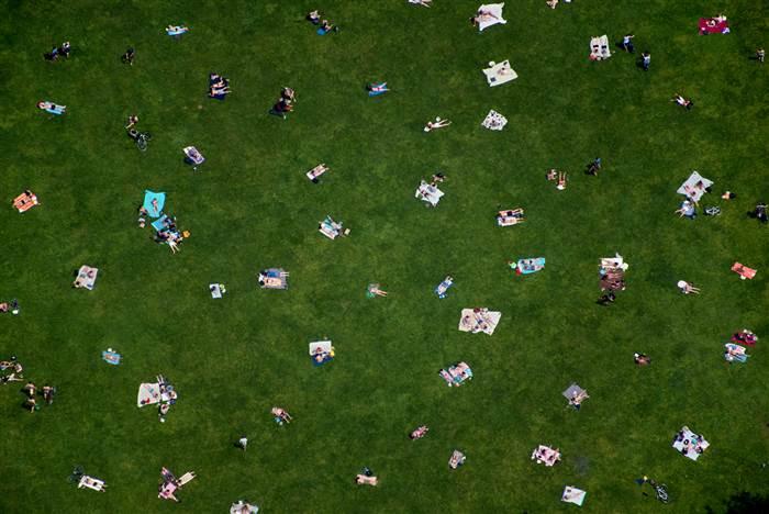 Central Park Lawn.