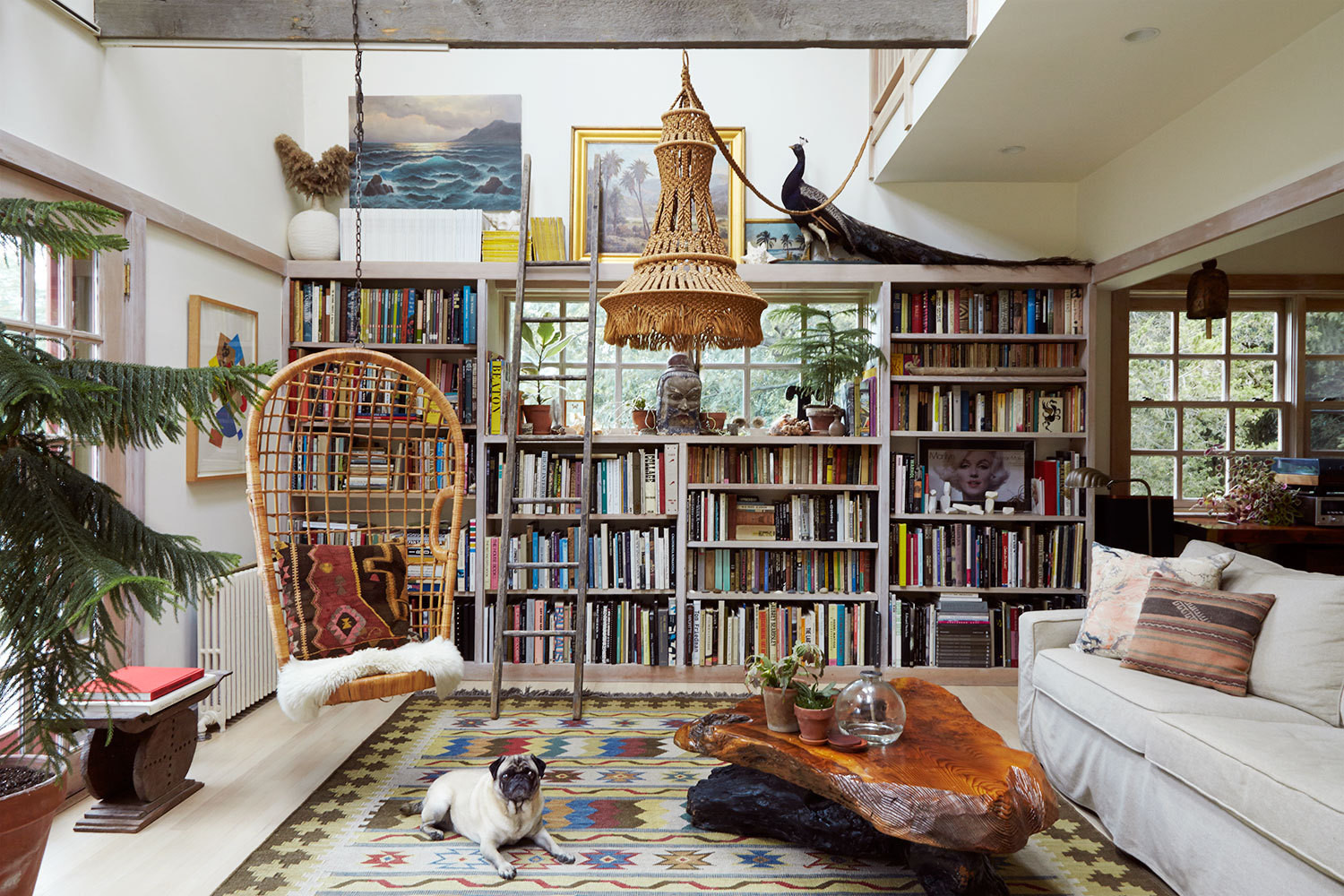 Vintage rug, adorable pug, and a heckton of books in upstate New York. Image from  Lonny