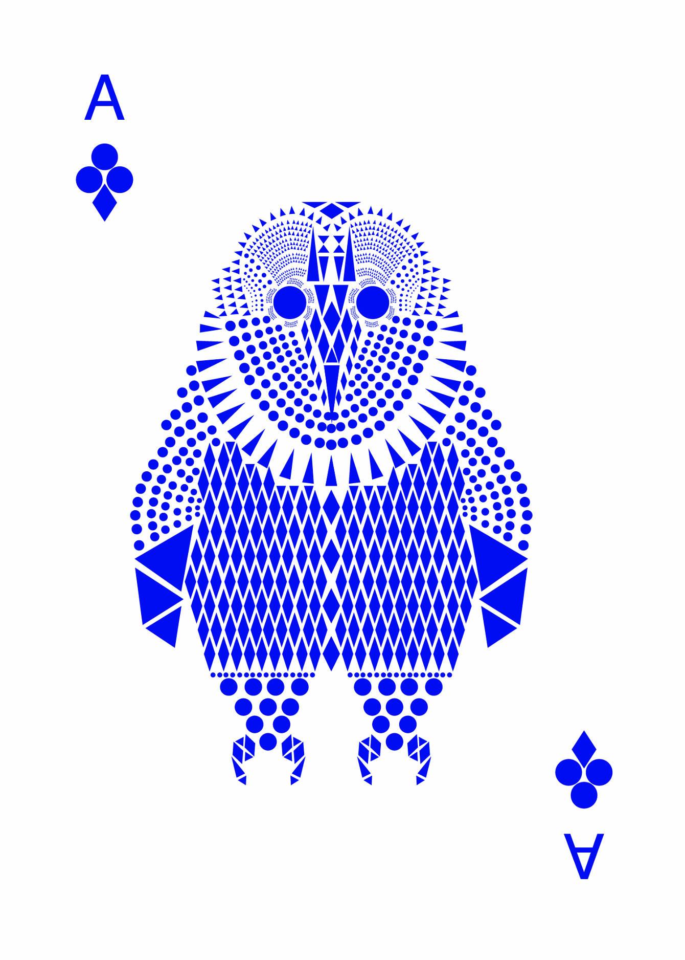 owl-cards-06_2x.jpg