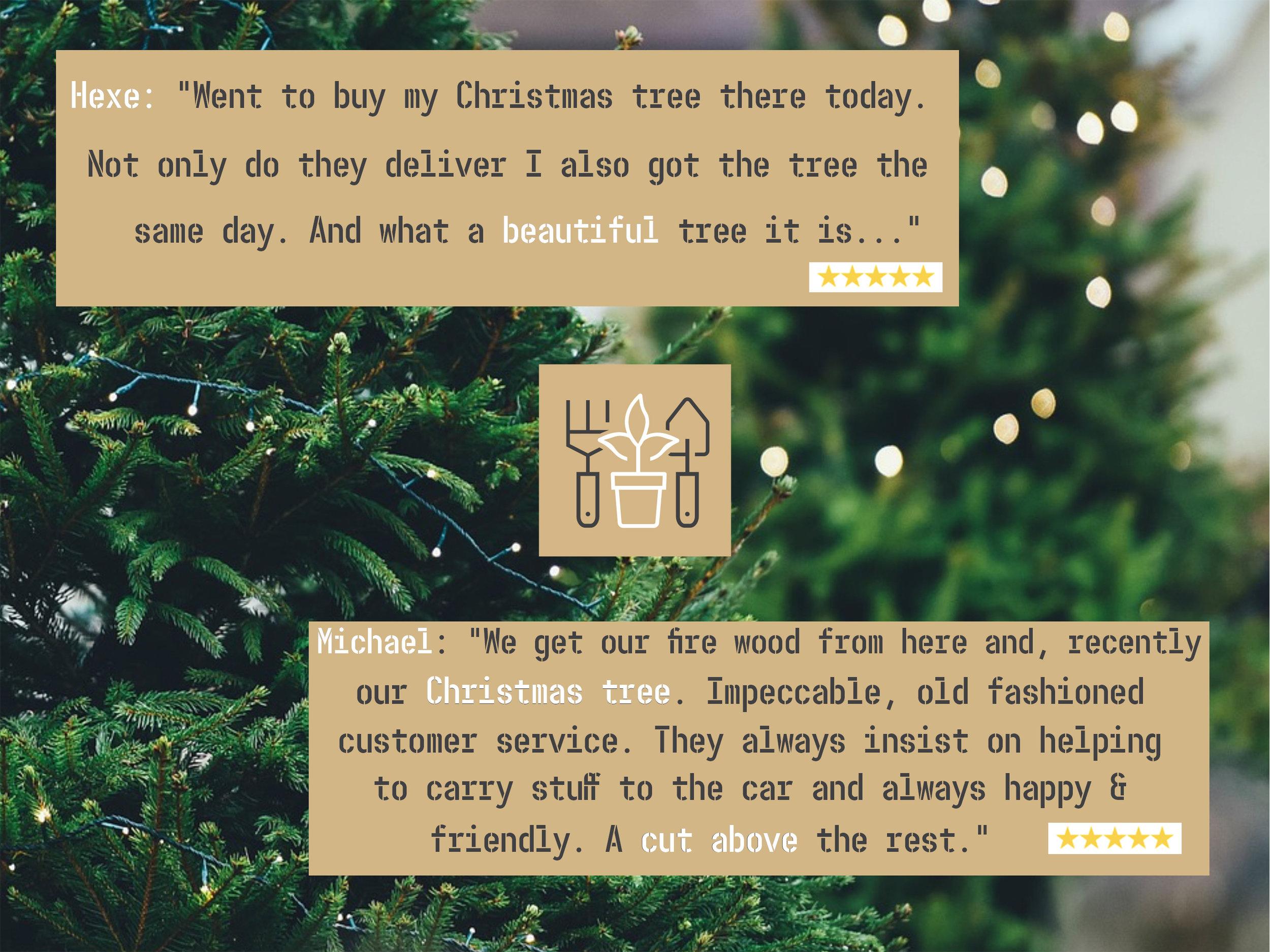 Tree Reviews (1).jpg