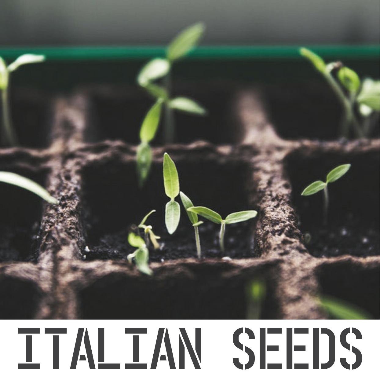 ITALIAN SEEDS R.jpg