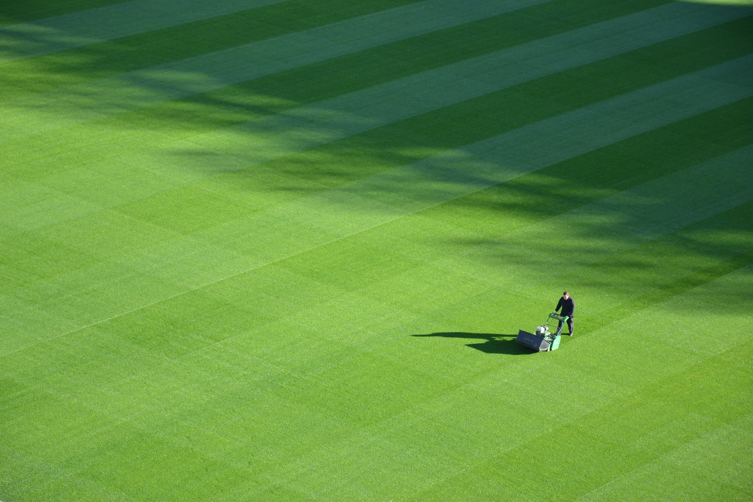 HOW TO CARE FOR YOUR NEW LAWN -