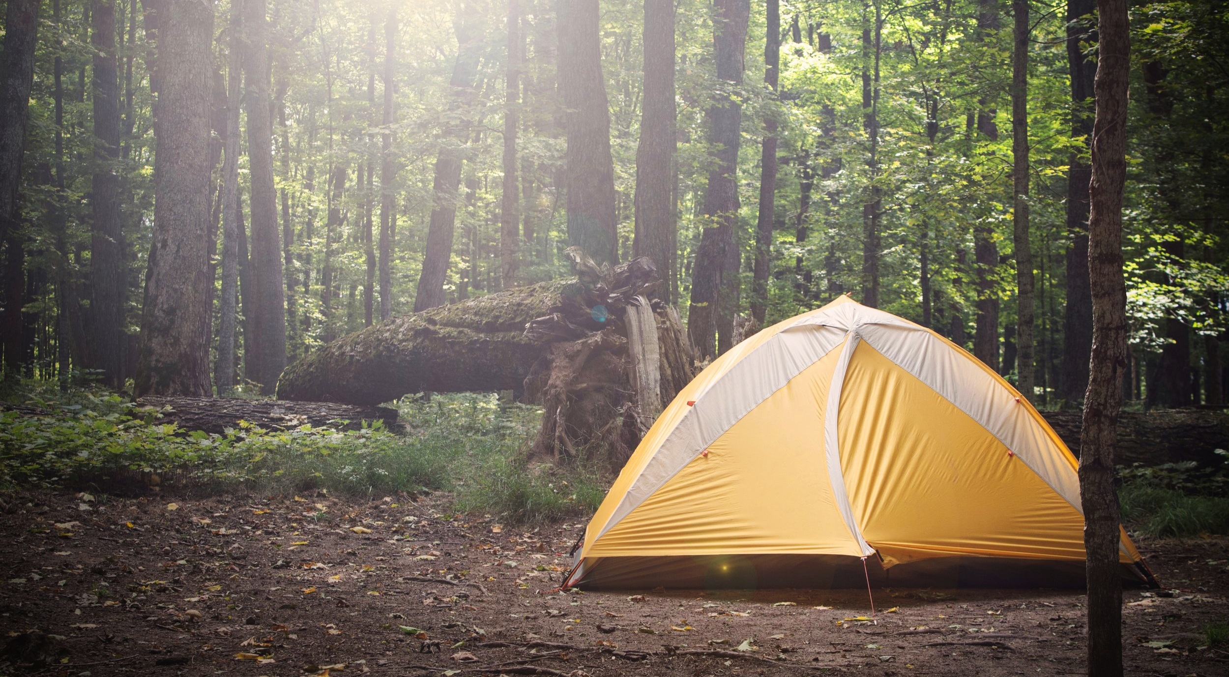 OTHER - If you don't want to stay in one of the cabins you can either bring a tent and camp or stay at home and commute back and forth. For both options there is no cost. You must still register if you choose either of these options.