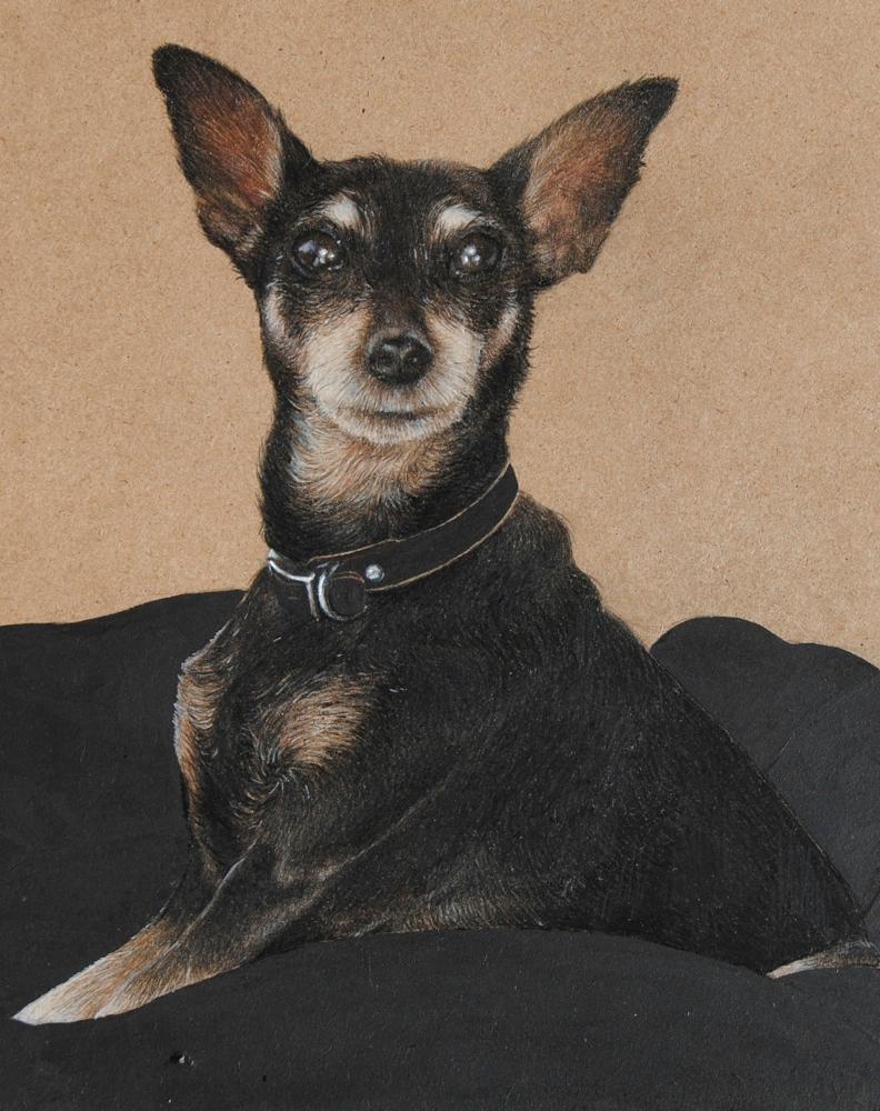 dog-2-cropped.jpg