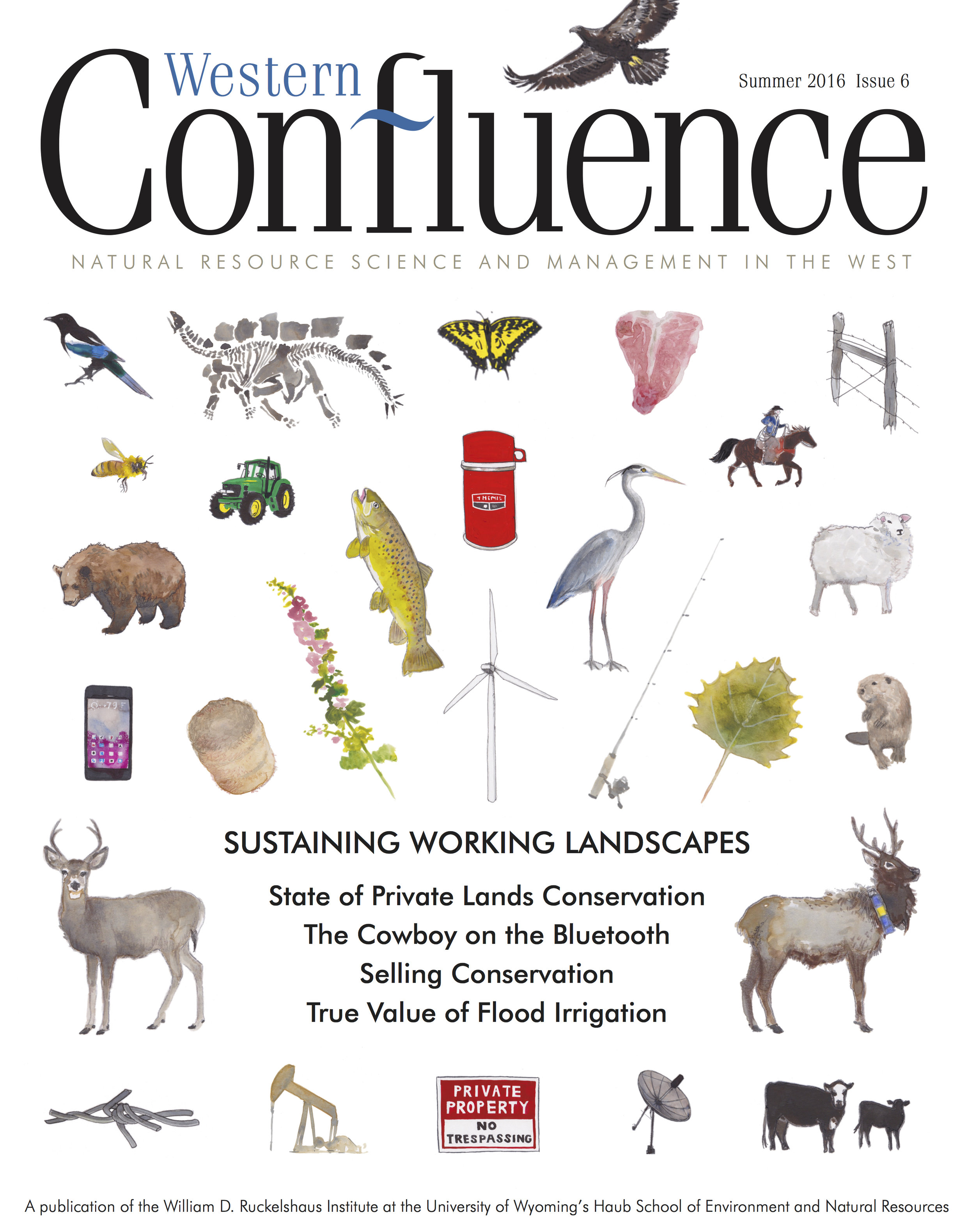 WESTERN CONFLUENCE SUMMER 2016 ISSUE 6  WILLIAM D. RUCKELSHAUS INSTITUTE OF THE UNIVERSITY OF WYOMING'S HAUB SCHOOL OF ENVIRONMENT AND NATURAL RESOURCES