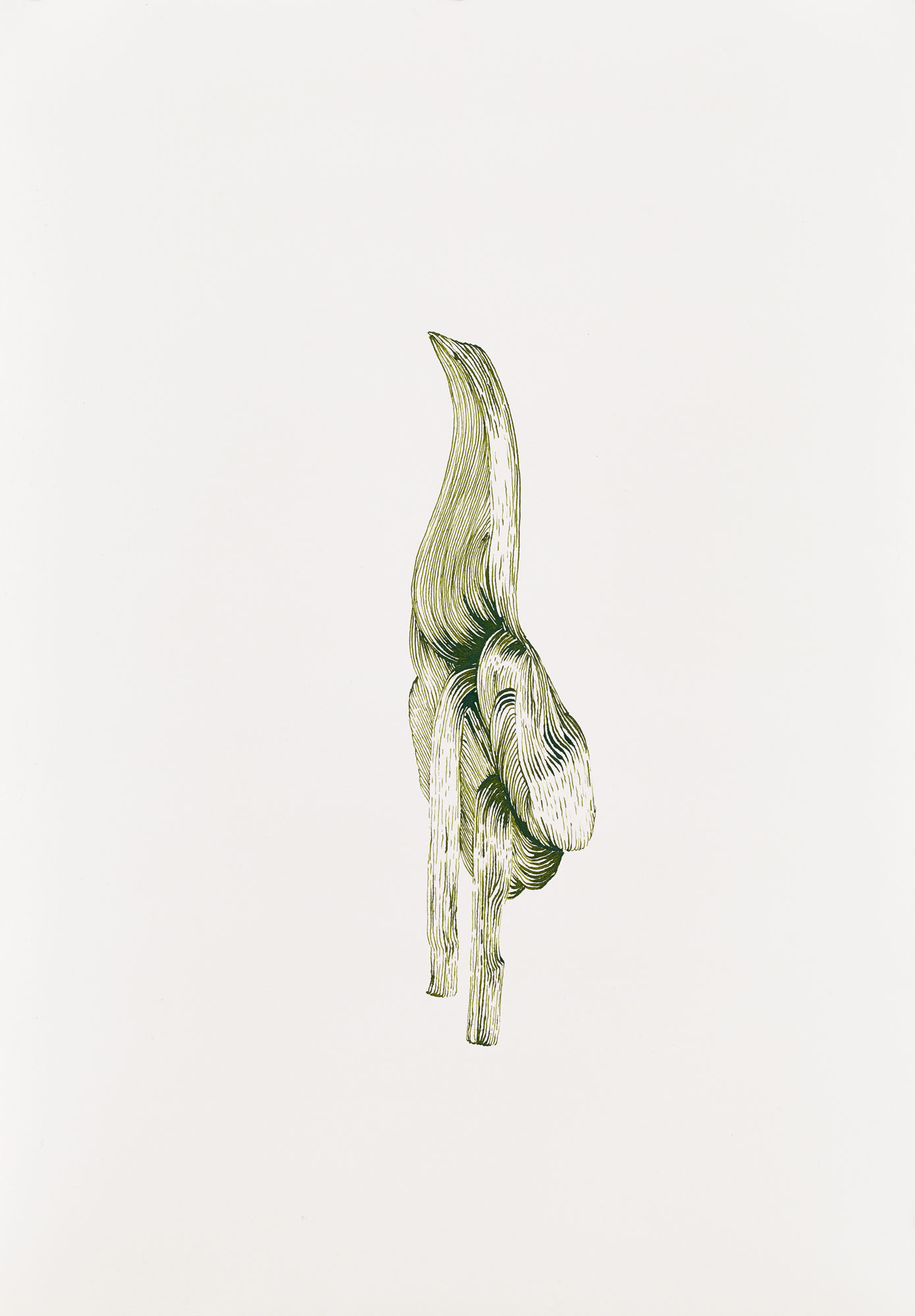BK P165 | untitled | green ink on paper | 42x29cm | 2013 | PRIVAT COLLECTION BERLIN