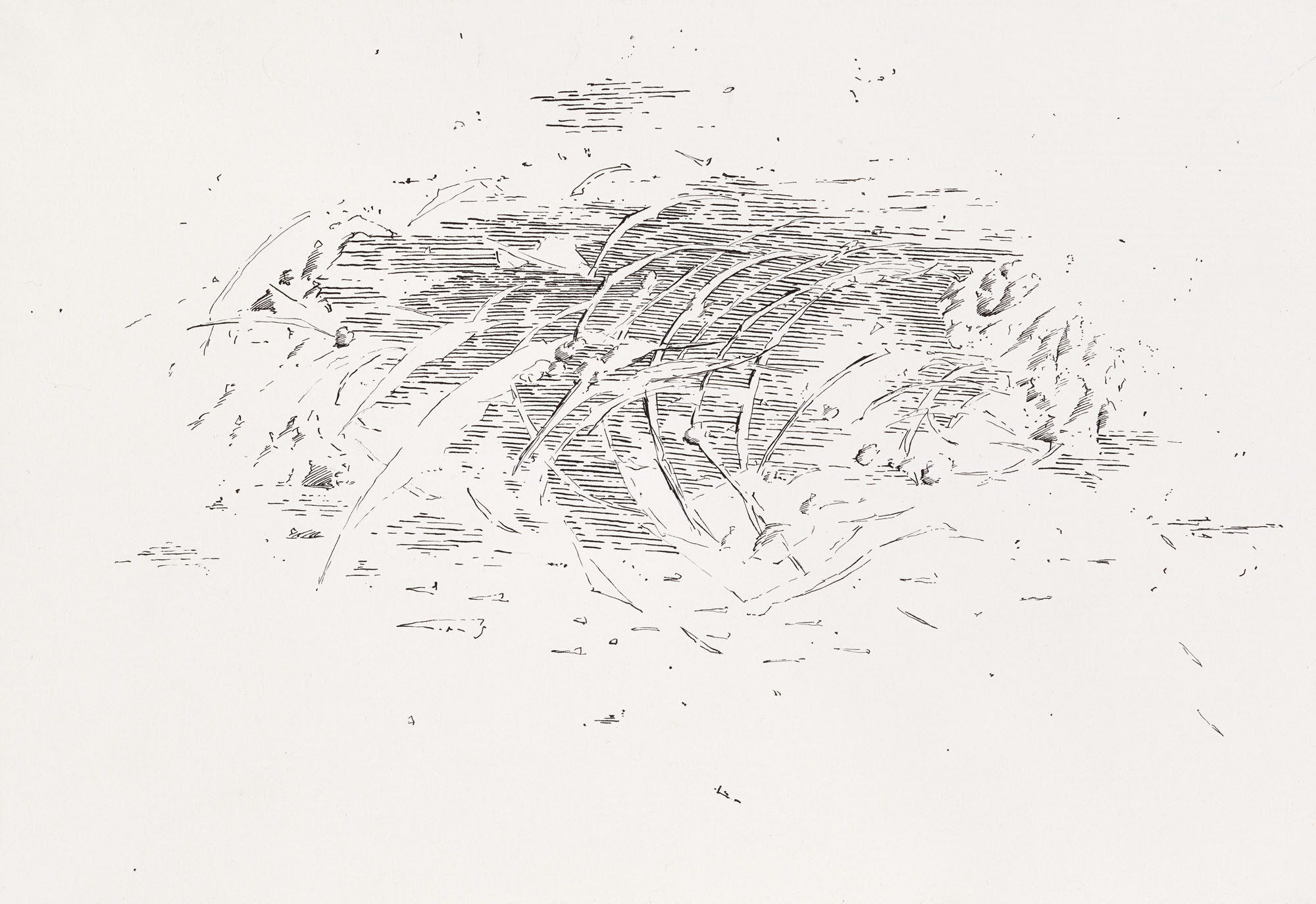 B_K_P_16514_untitled_ink_on_paper_21x29cm_2012