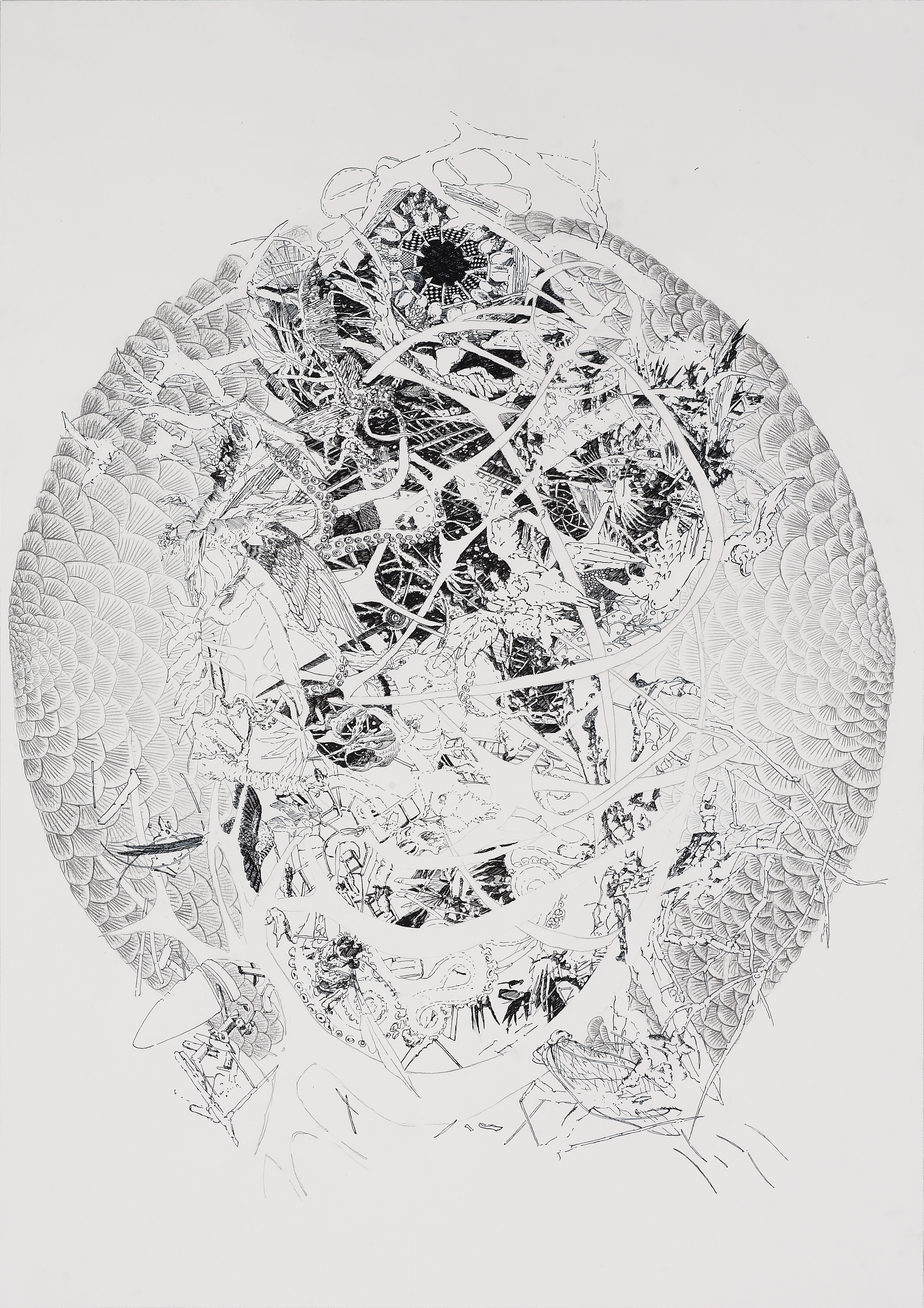 BK P4.002 | untitled | ink on paper | 100x70cm | 2011 | privat collection munich
