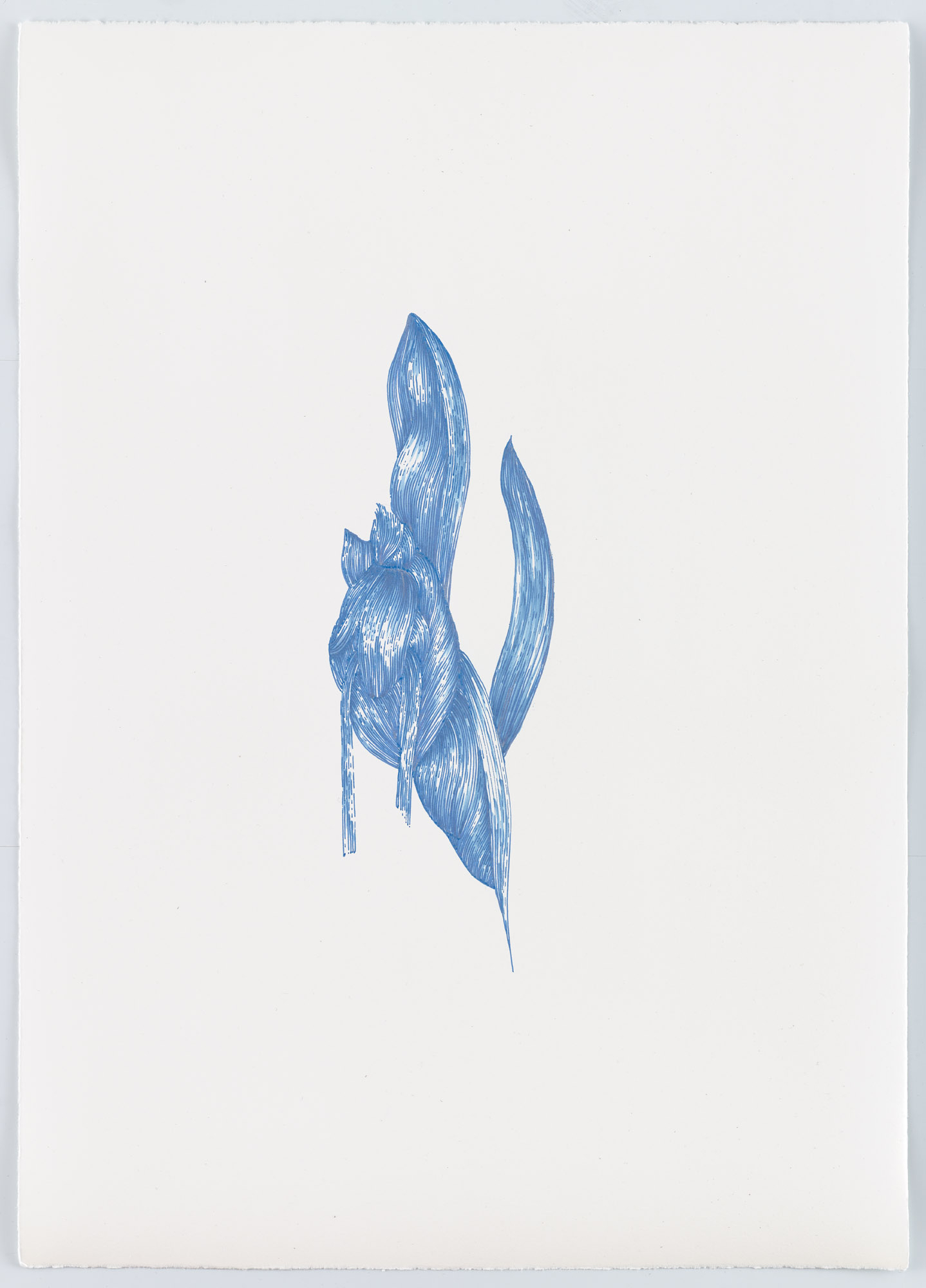 BK P12987 | untitled | metallic blue gloss paint marker on paper | 59x42cm | 2016
