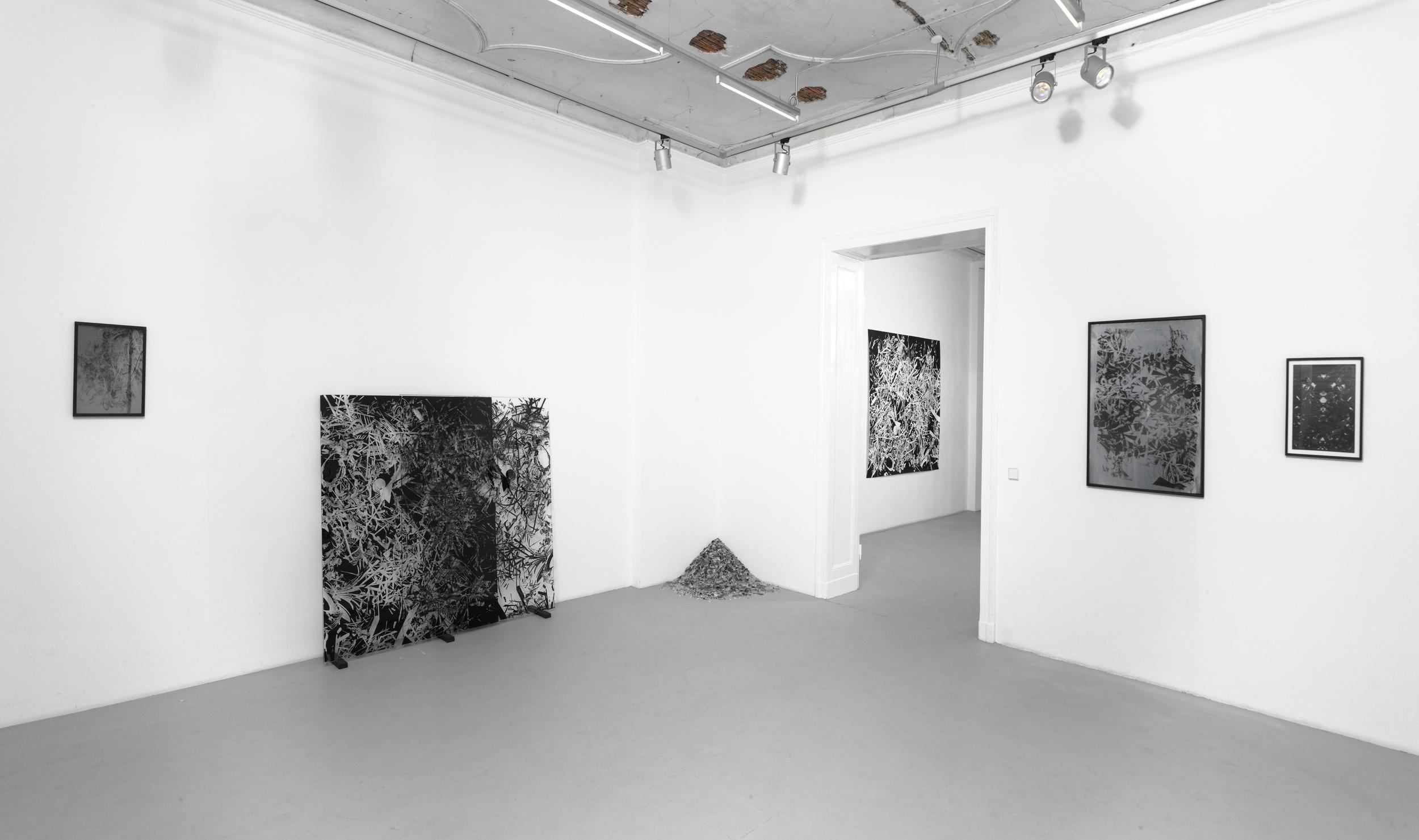 exhibition_view_Ich_weiß_dass_ich_nichts_weiß_at_AndraeKaufmann_Gallery_2012.jpg