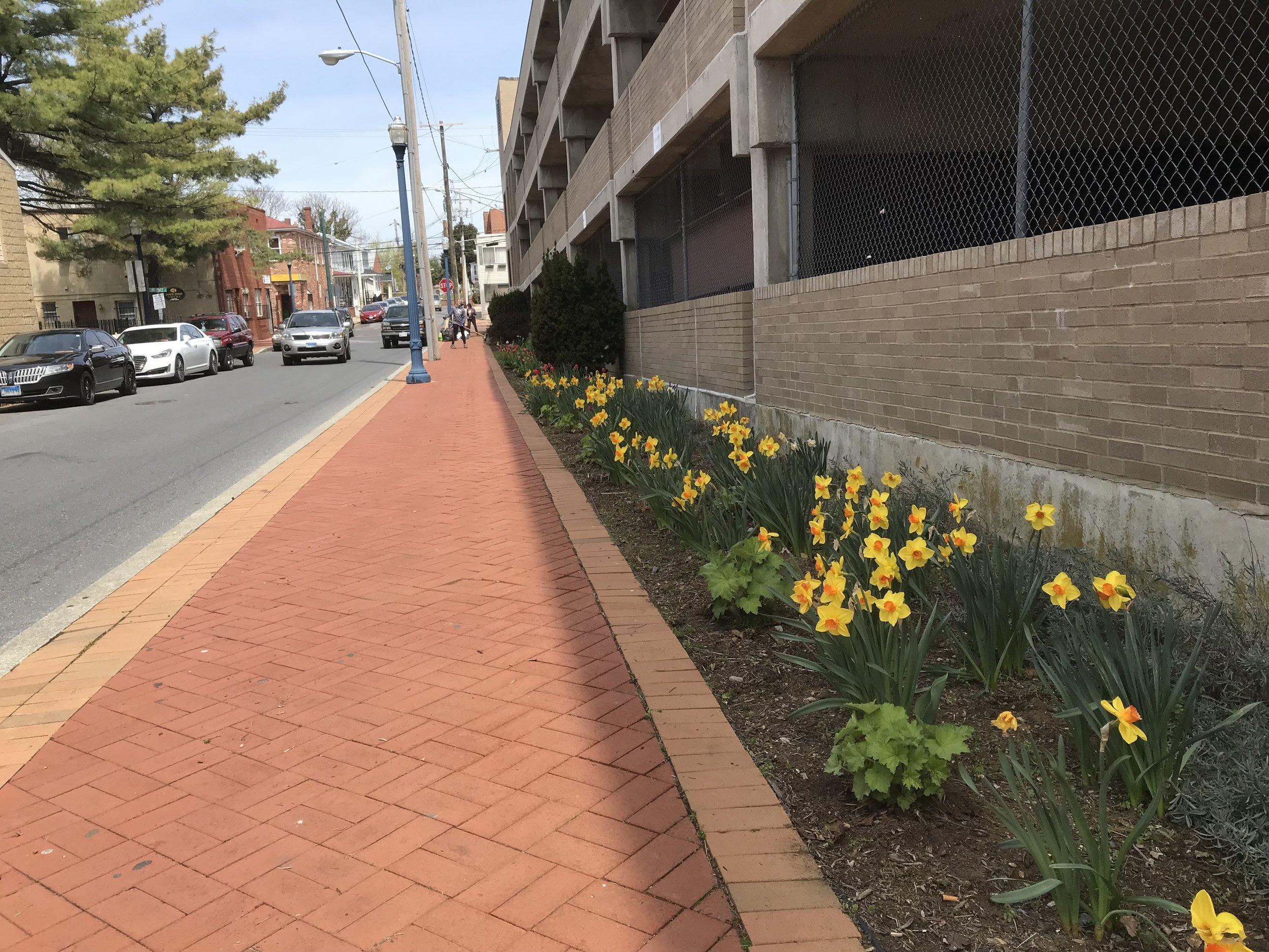 Annapolis Greenscape April 2018