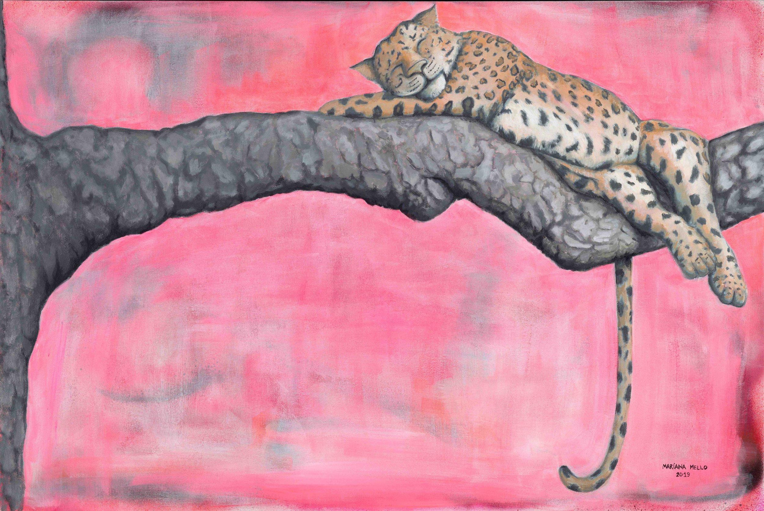 Lazy Leopard (2019)