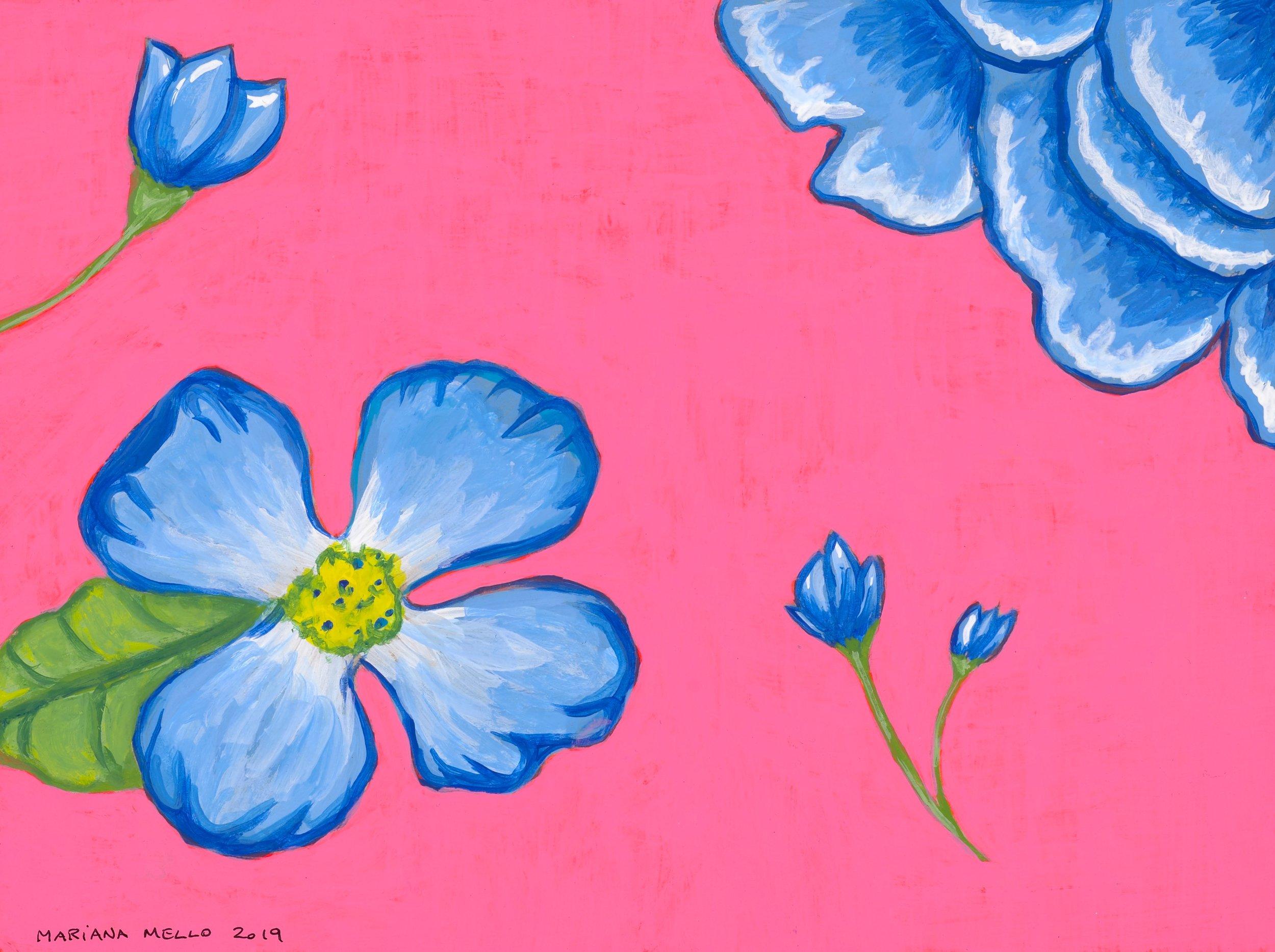 Flower Study Pink (2019)