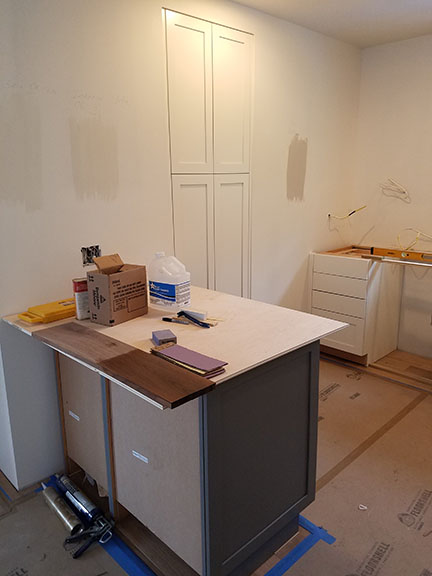 Ann Arbor Remodel Kitchen Cabinets.jpg