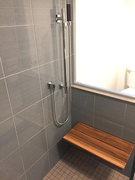 Ann Arbor Basement Remodel - Shower.jpg