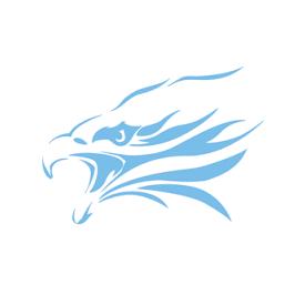 Skyline Hockey Logo