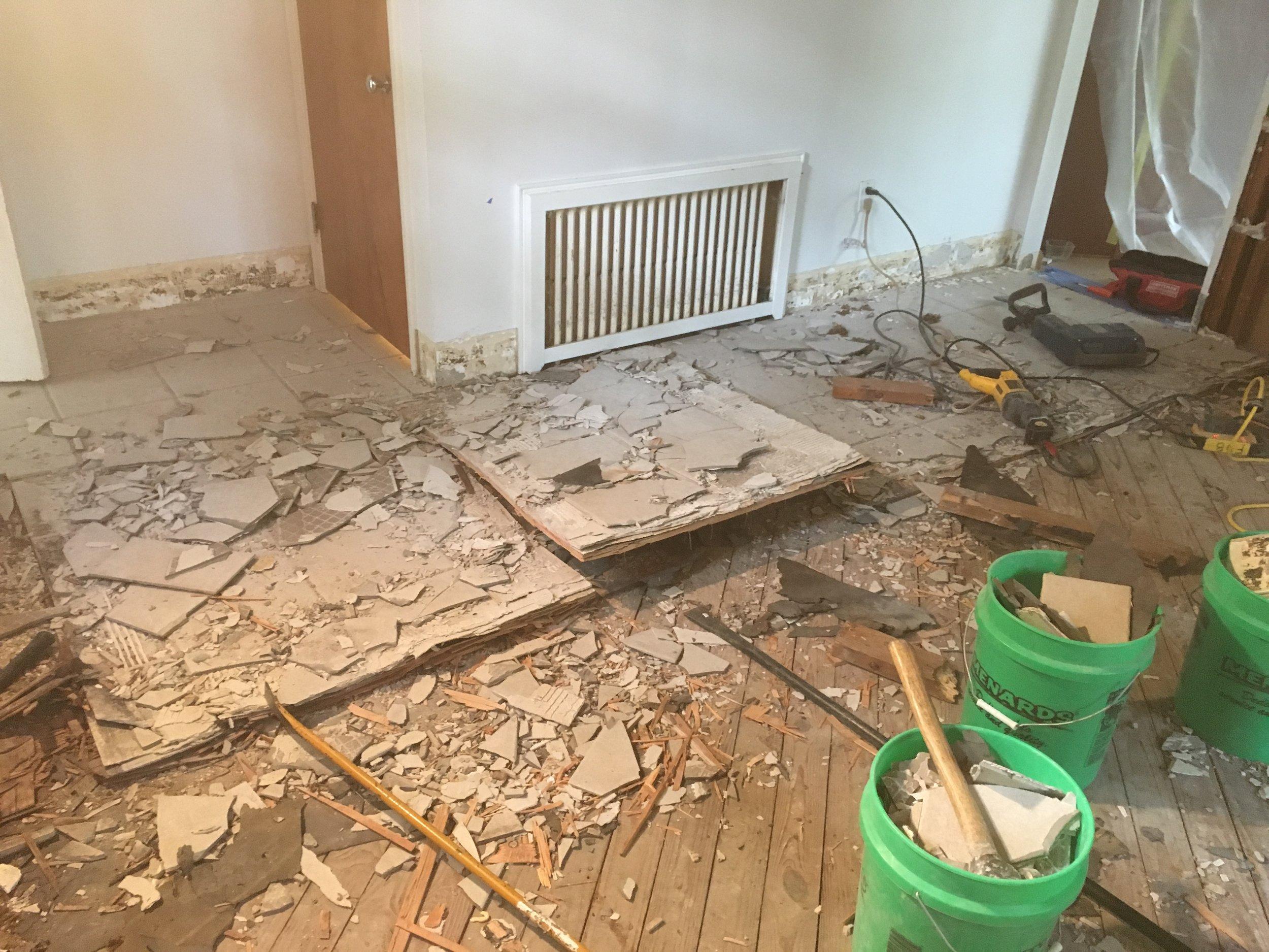 Plaster removal