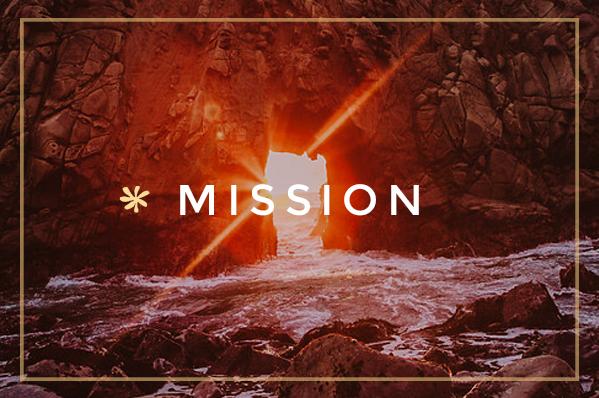 btn-mission.jpg