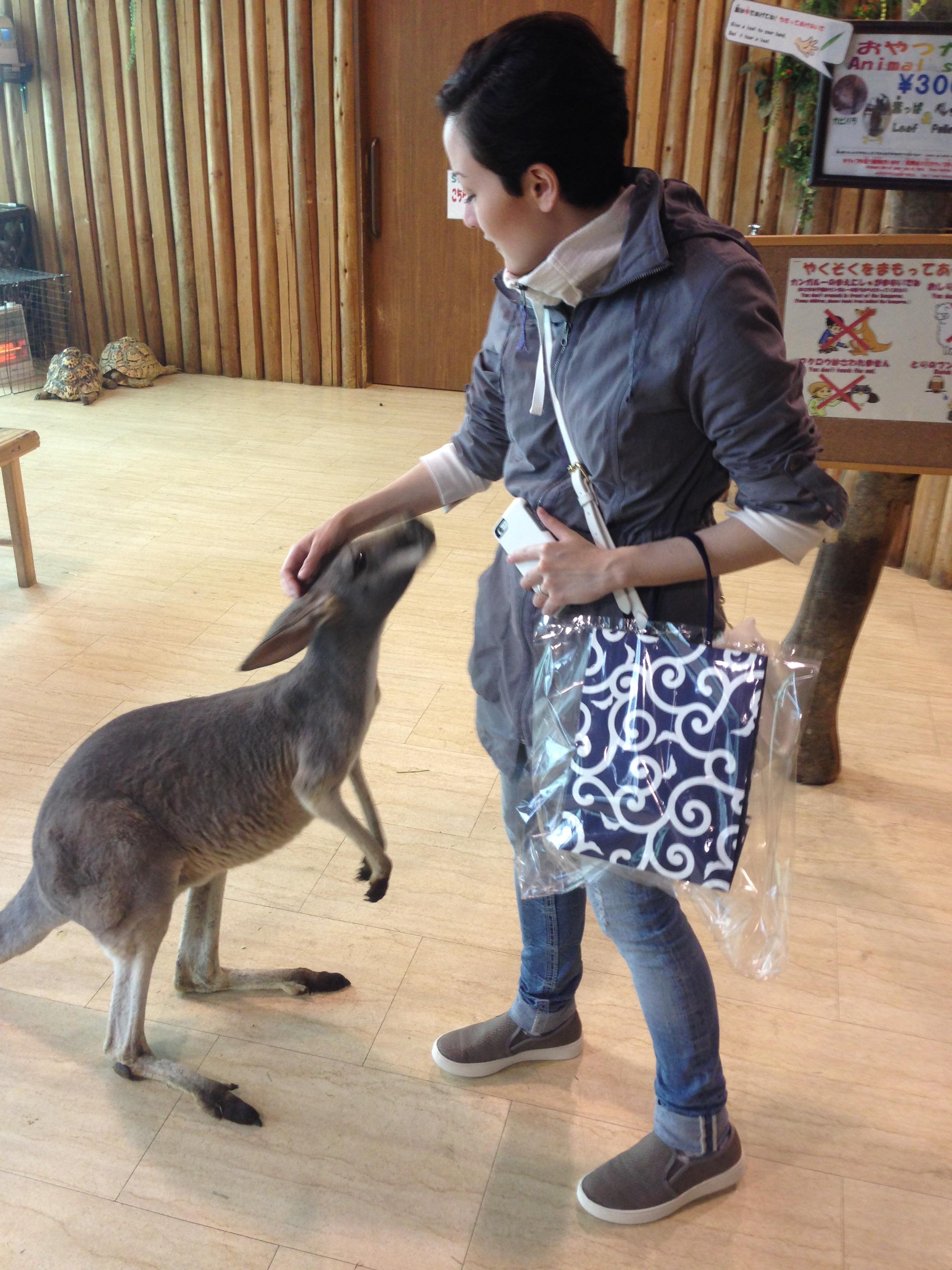 Me and a kangaroo.