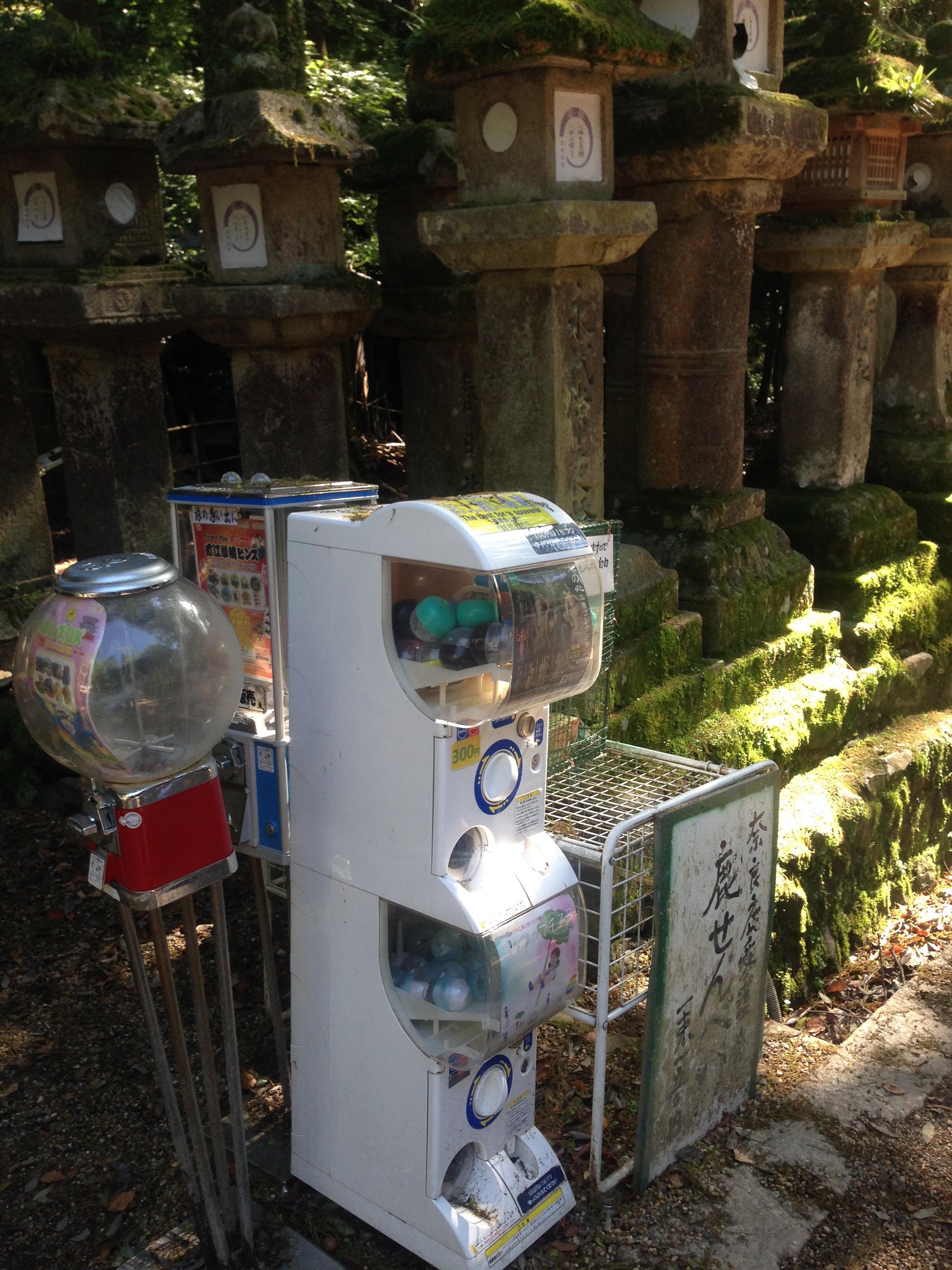 Vending machines next to century old oil lanterns!
