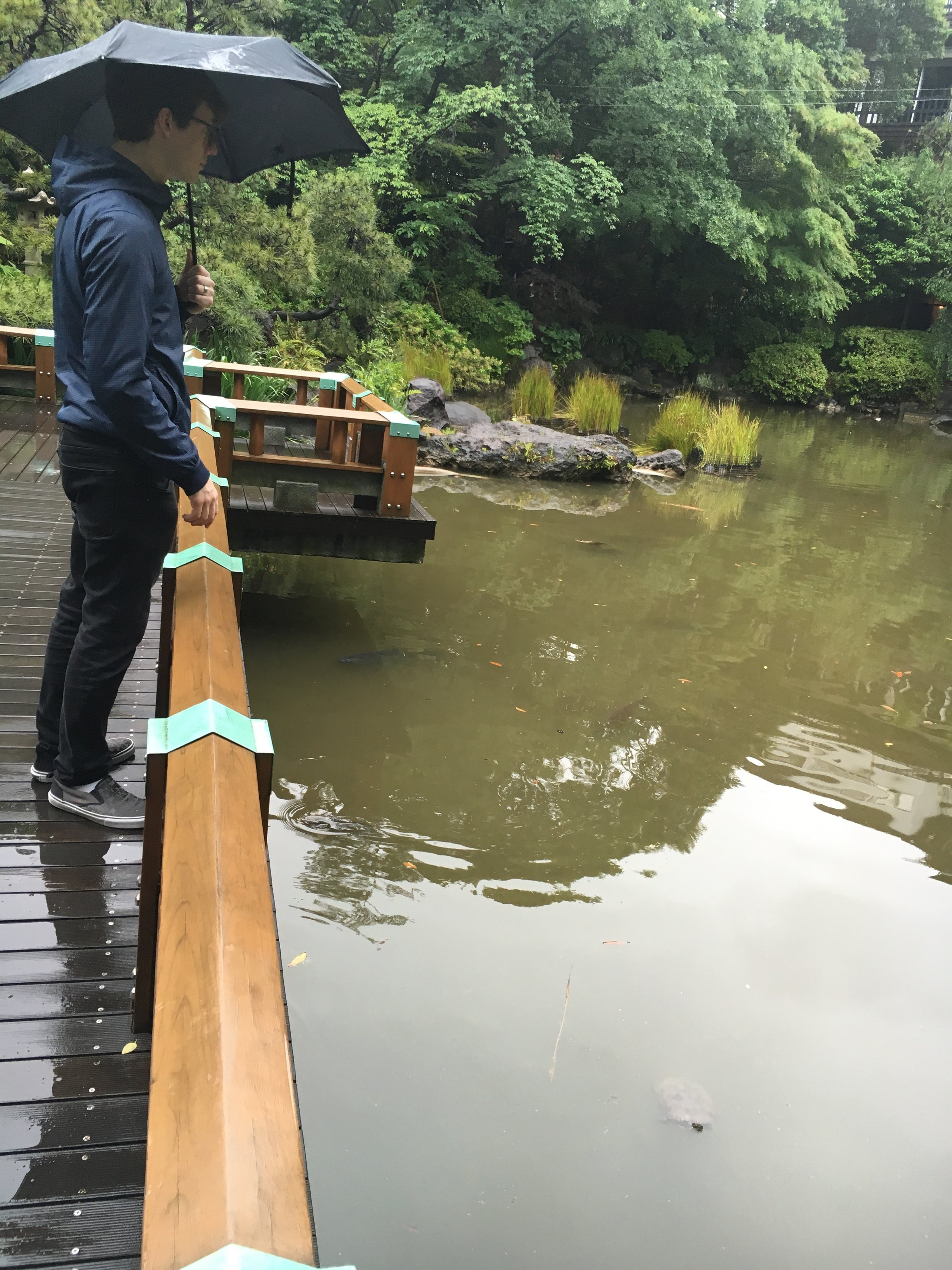 Michael at the koi pond.