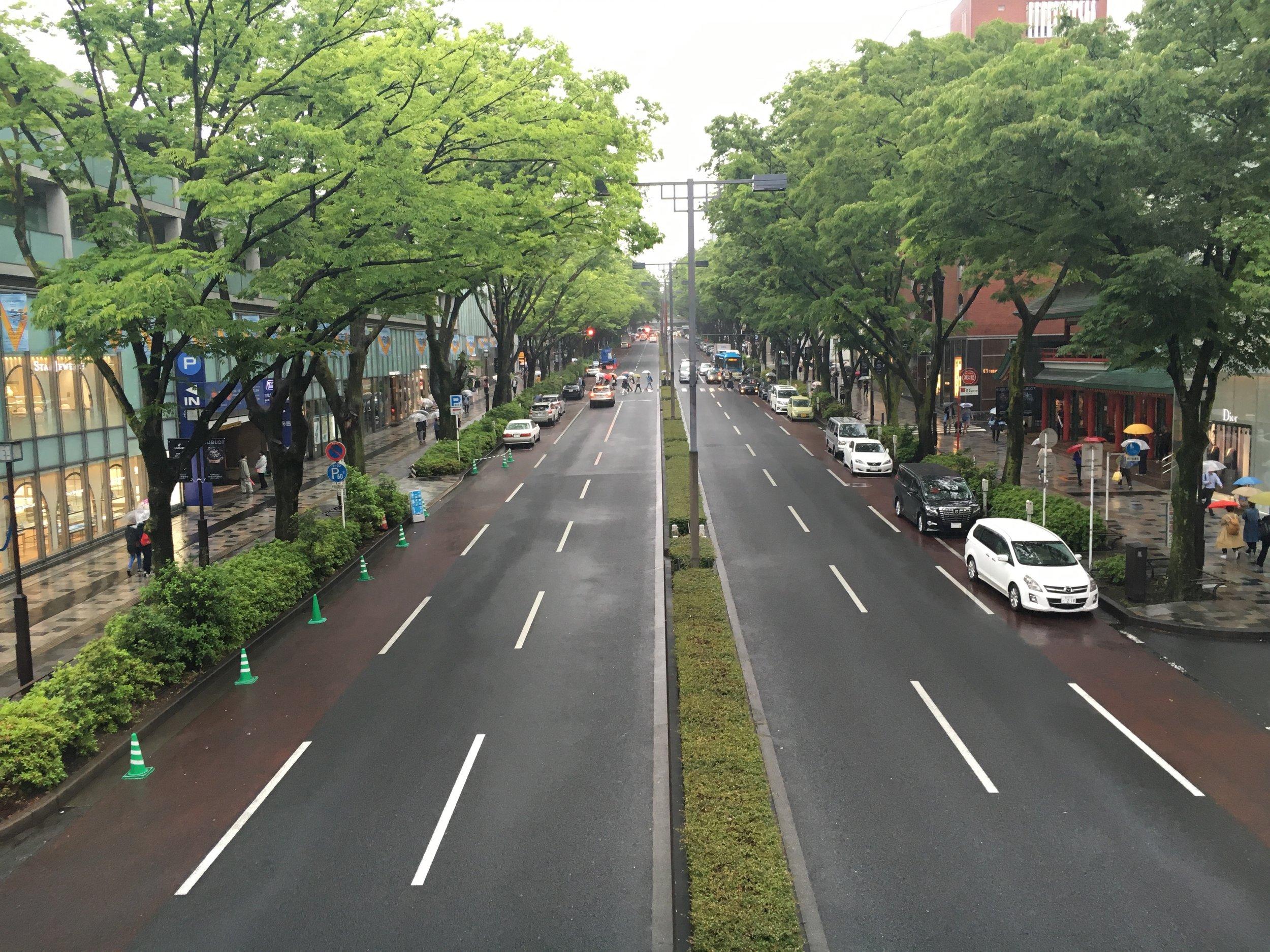 Harajuku was so green and pristine!
