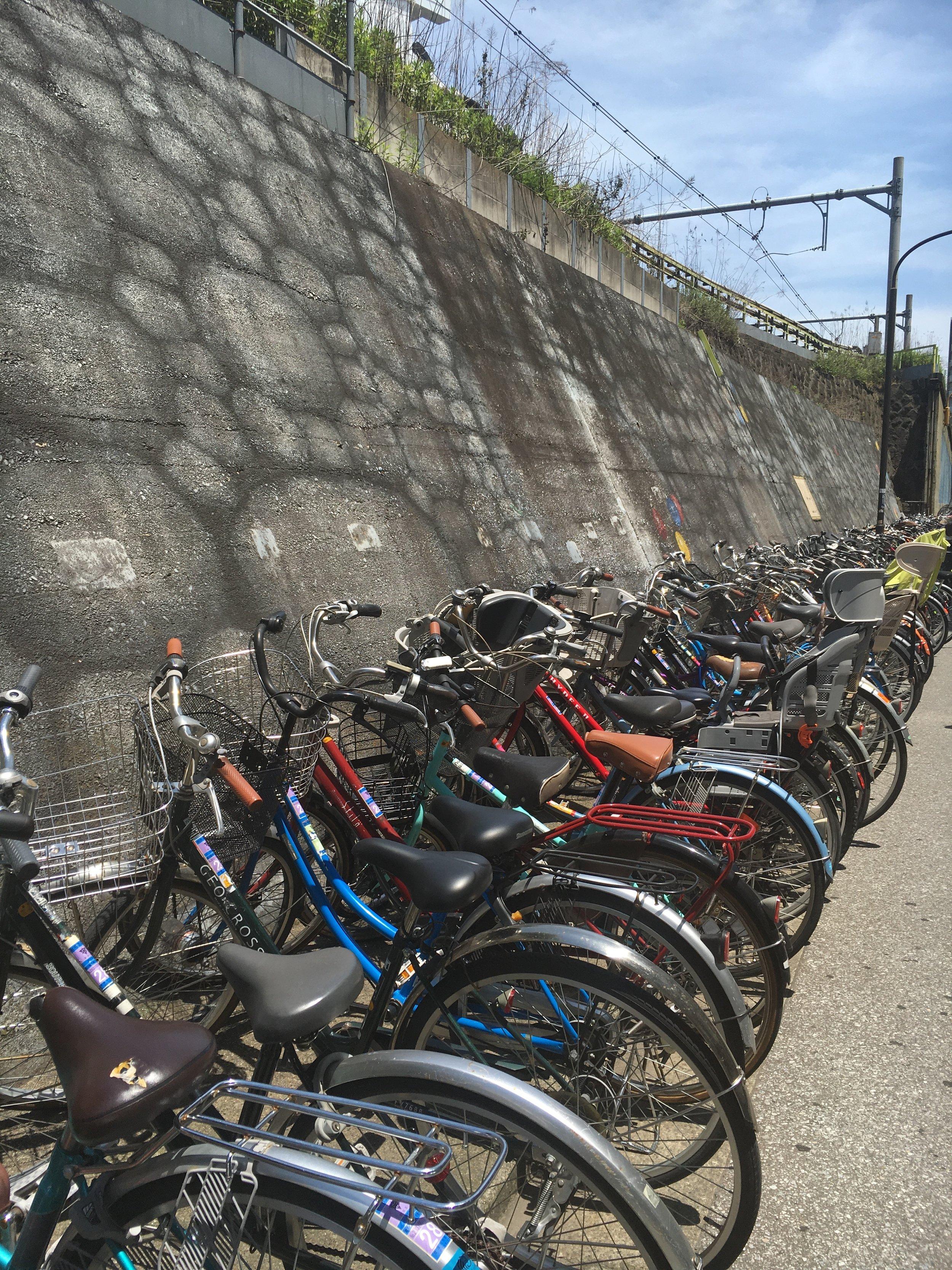 Bikes and more bikes!